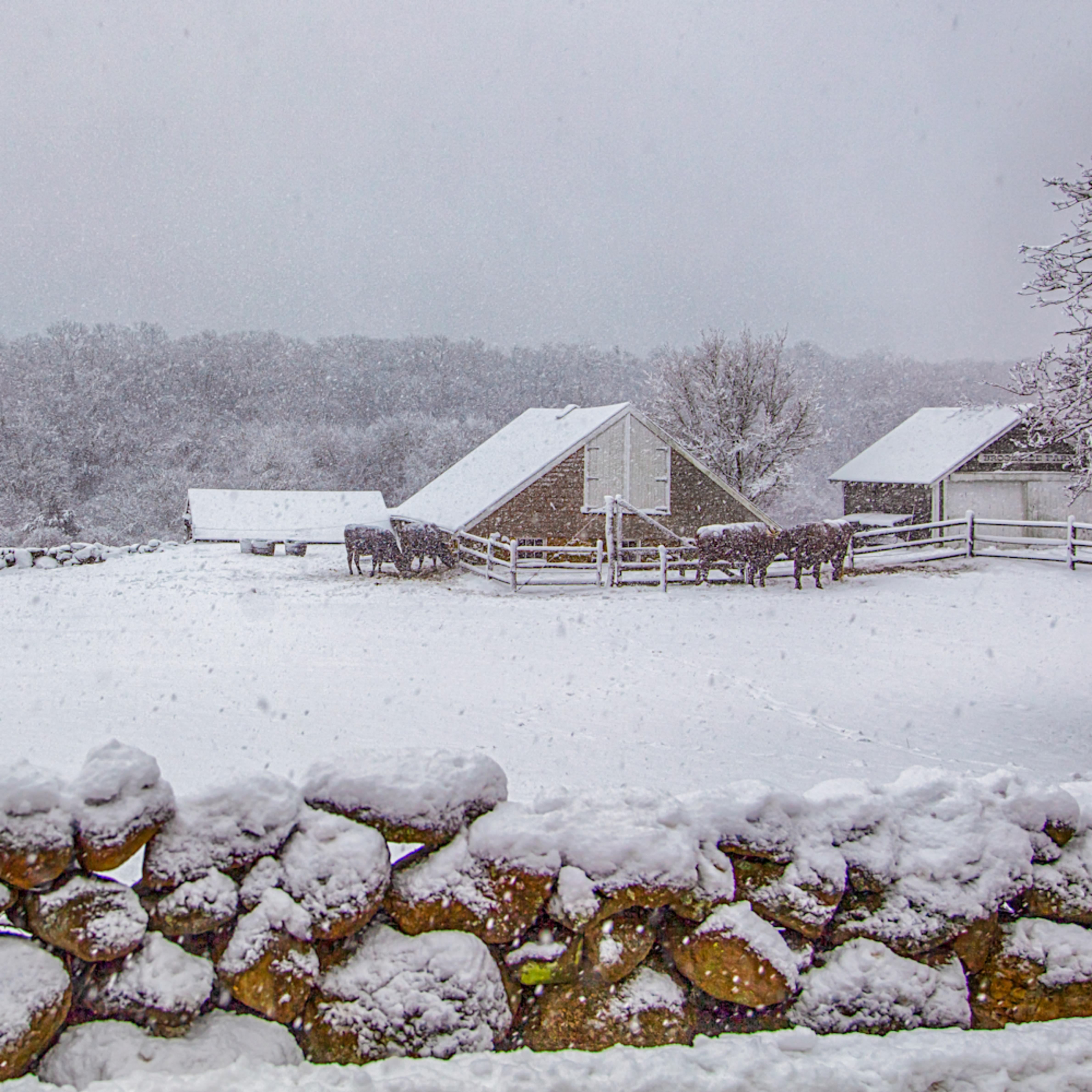 Brookside farm snow kvkm2k
