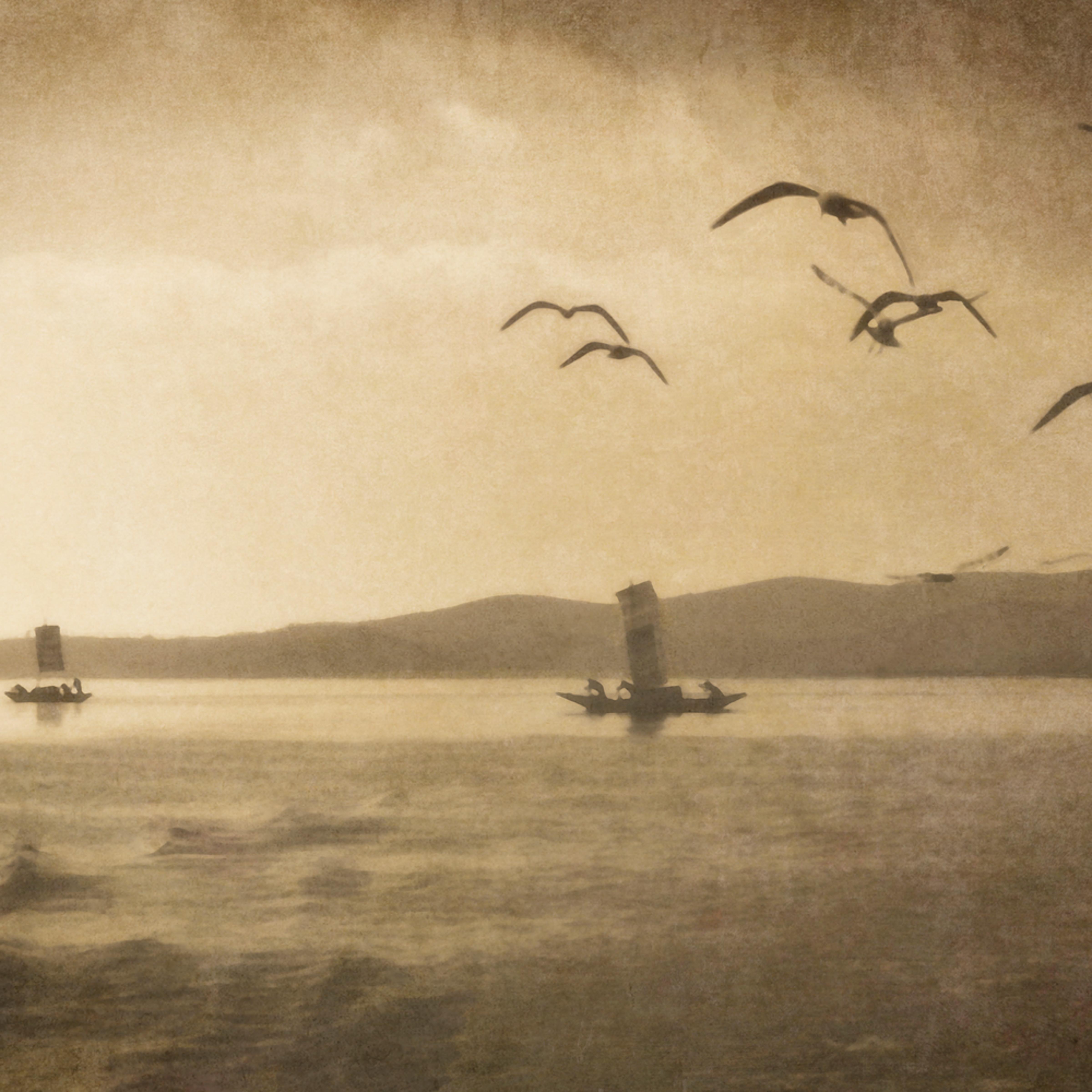Dienchi lake fishing with gulls kbod4a