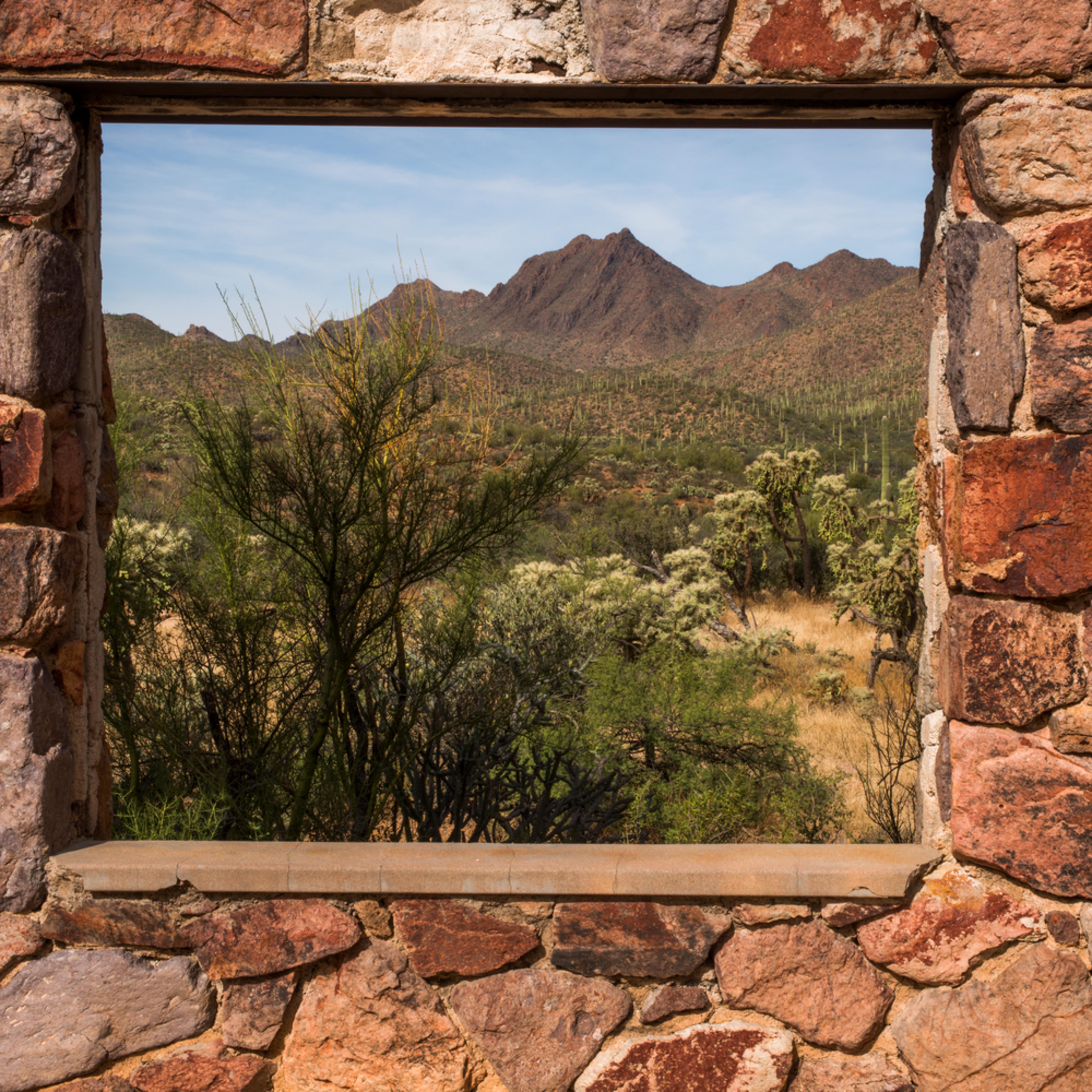 Dp502 picture window dyzsun