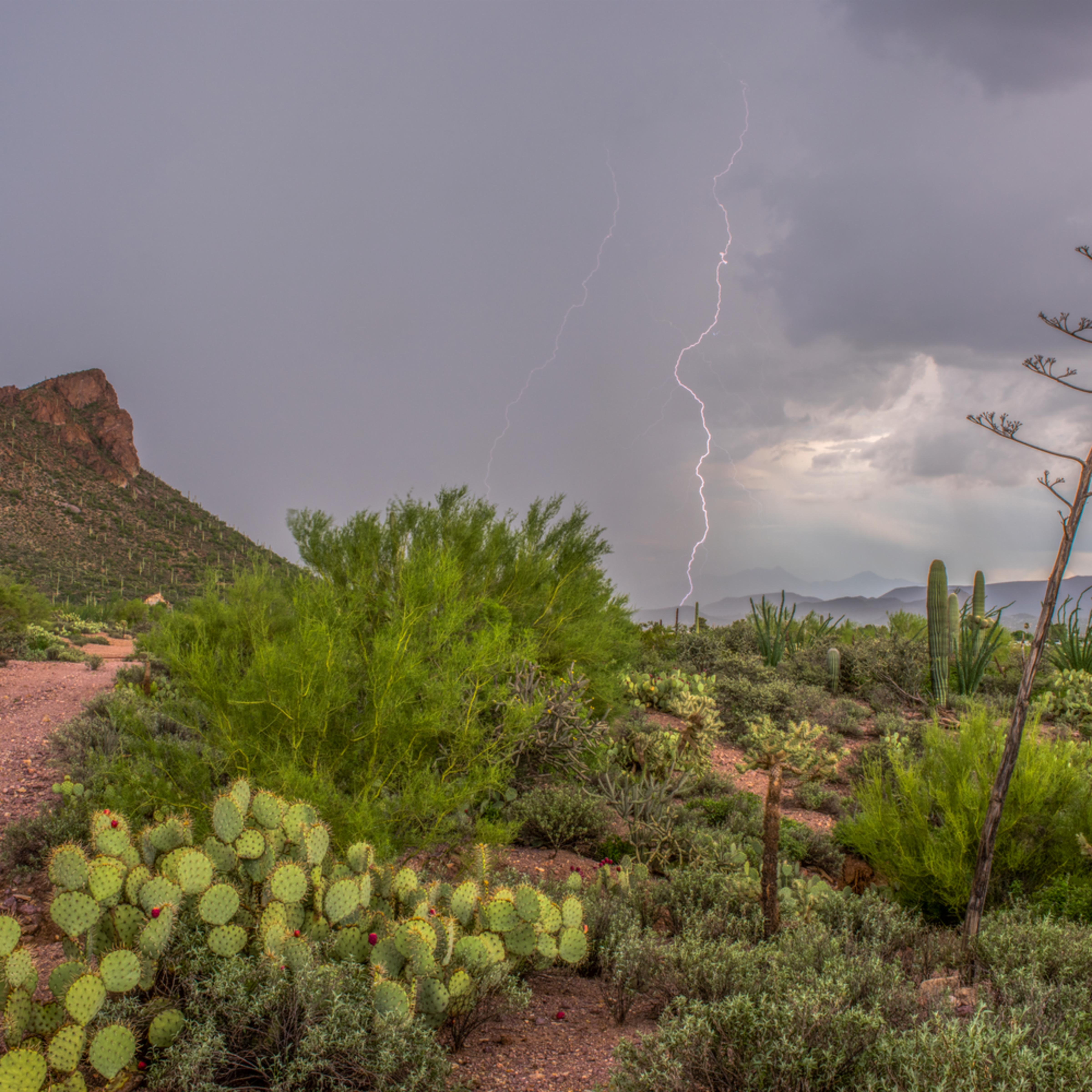 Dp525 little cat mt monsoon lightning c9aykk