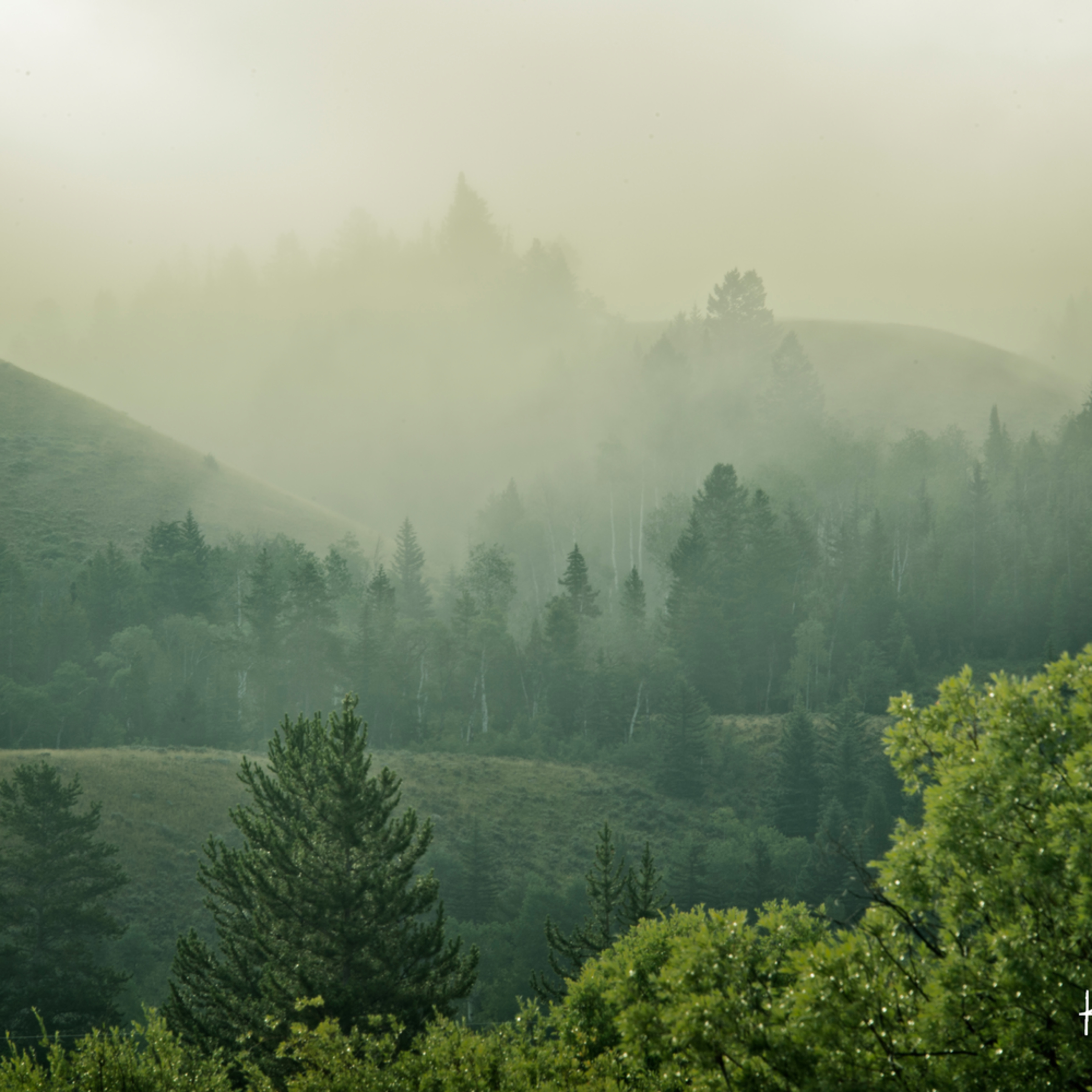 Layered fog gtqmhf