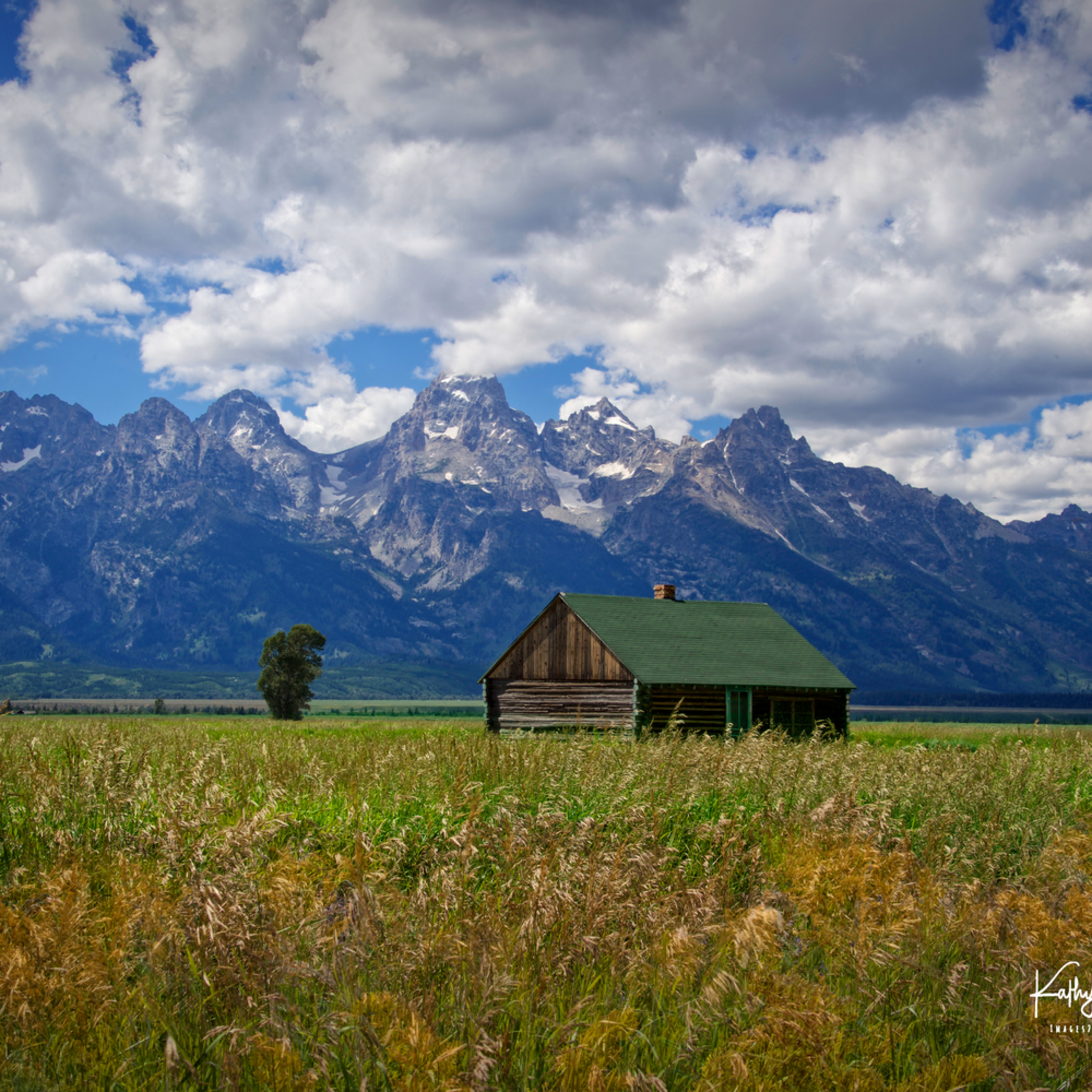 Tetons at mormon row otooyv