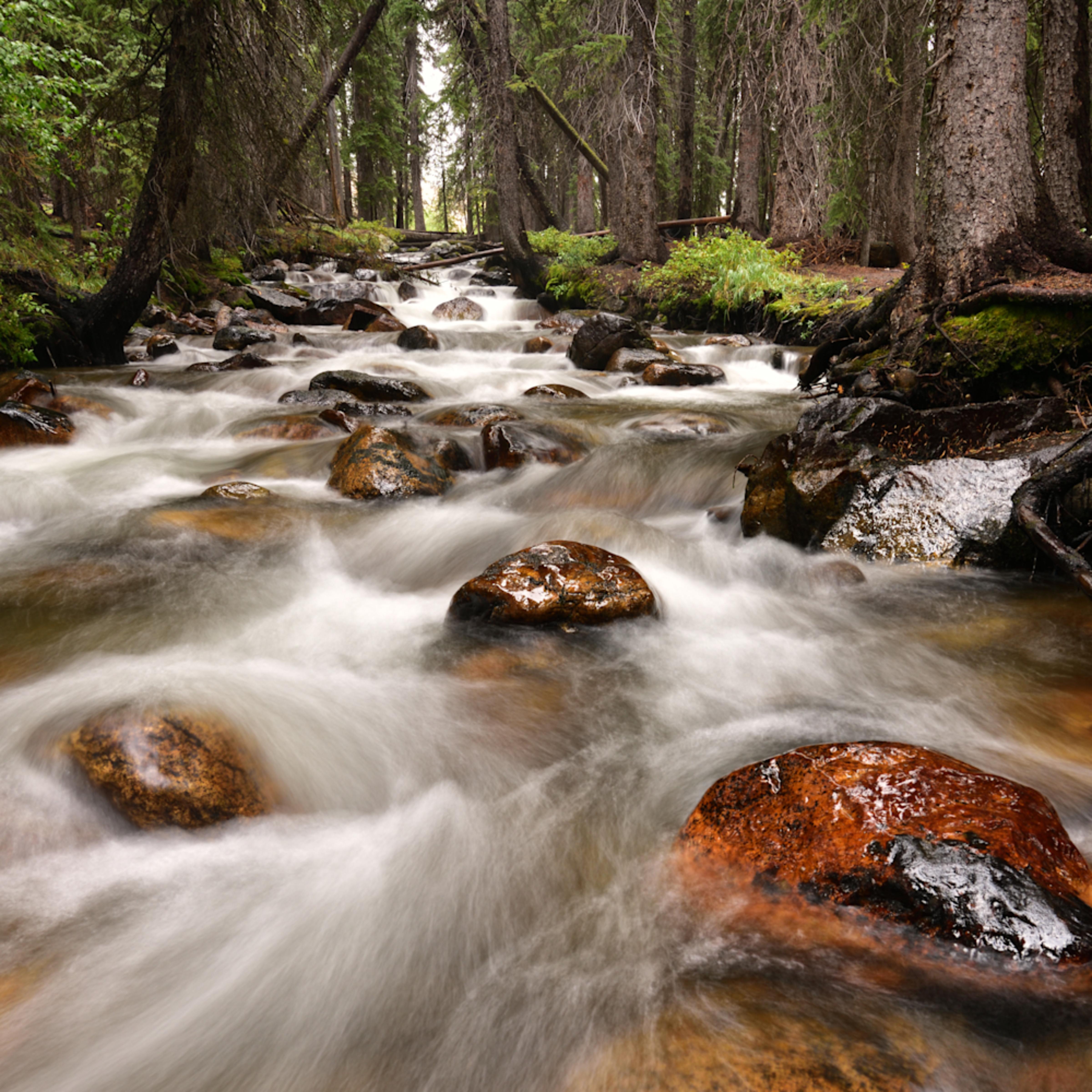 D81 6229 fishhook creek 3 rocks crop.into the woods.hr ns rgfjzq