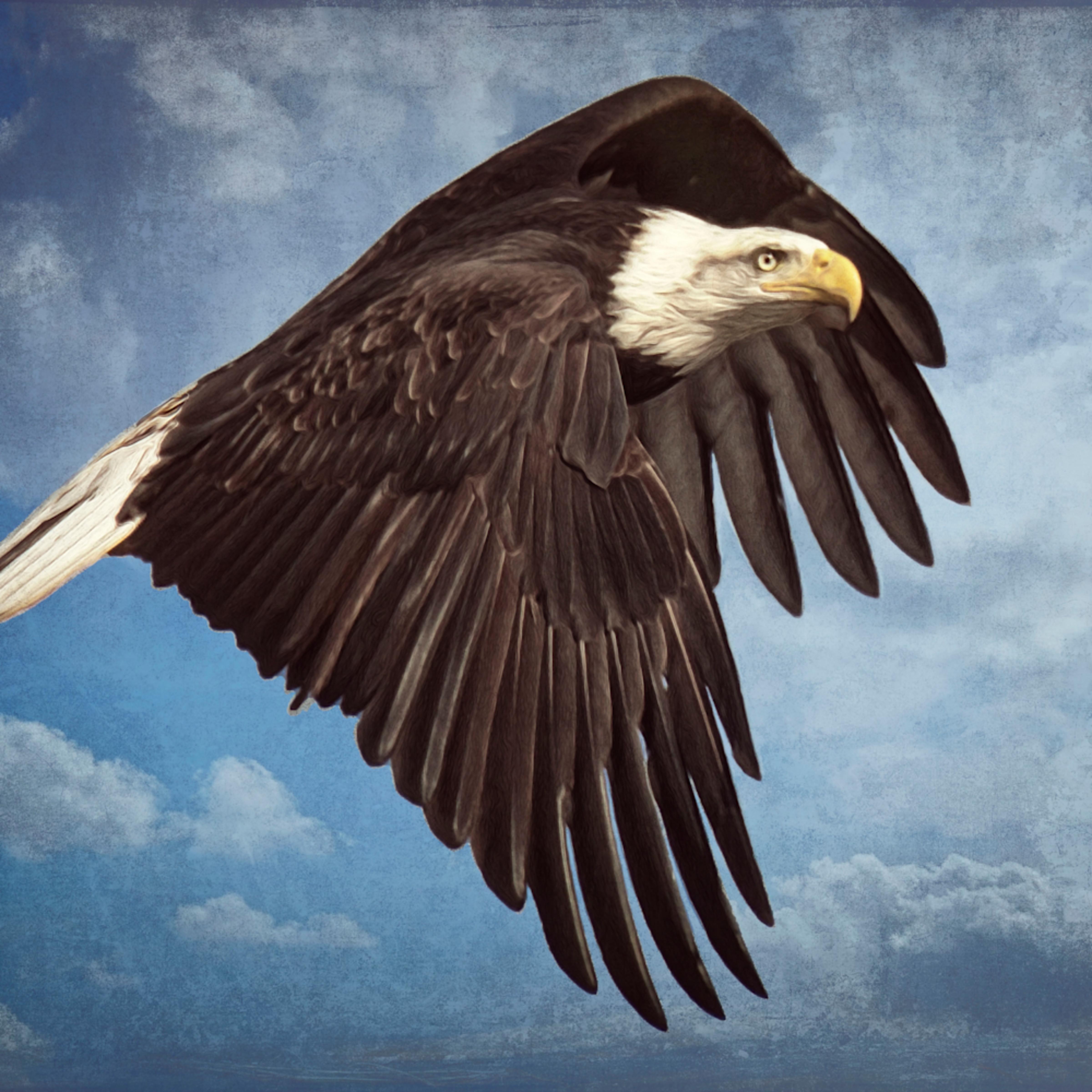 Banking eagle2 cfwz8h