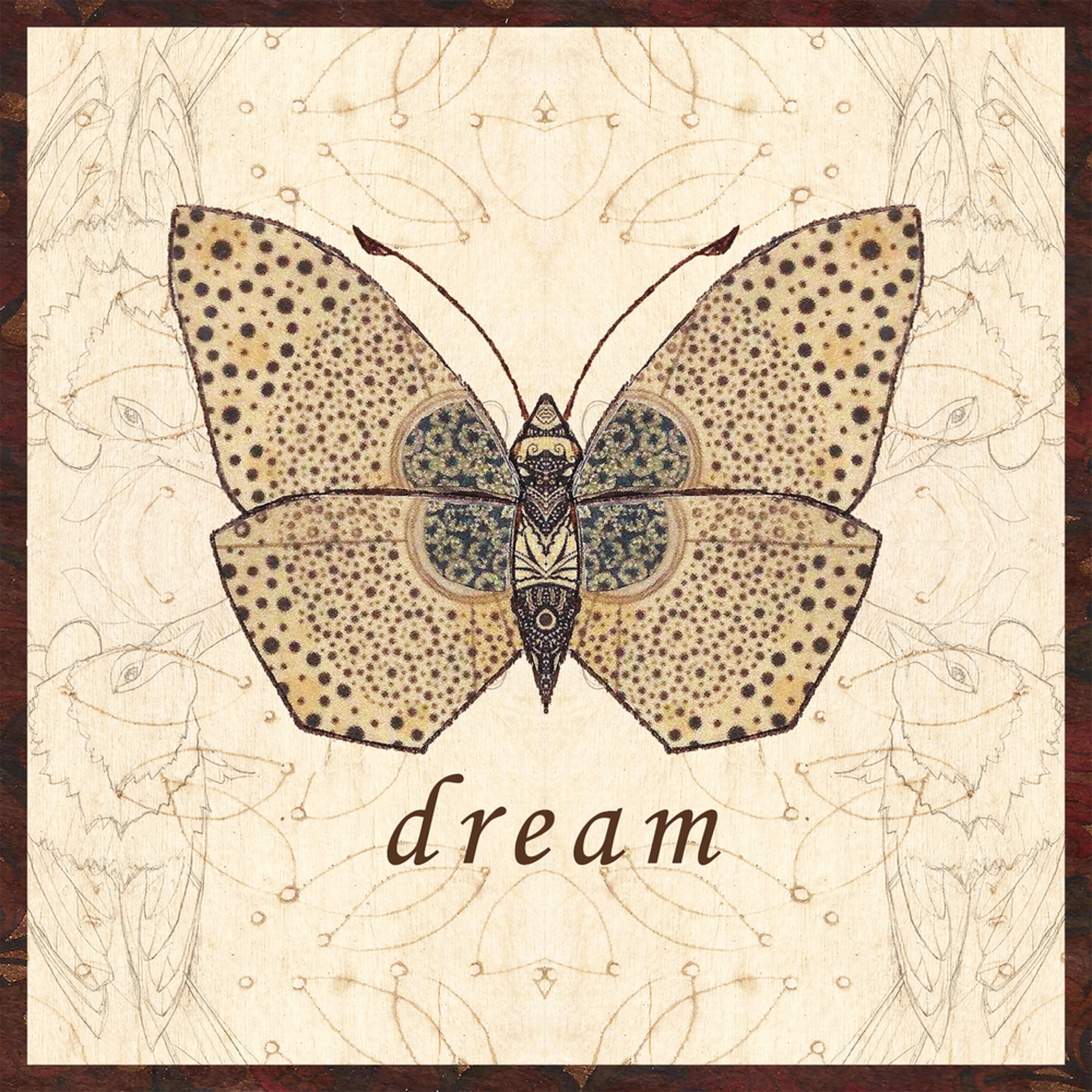Dream m5s81i