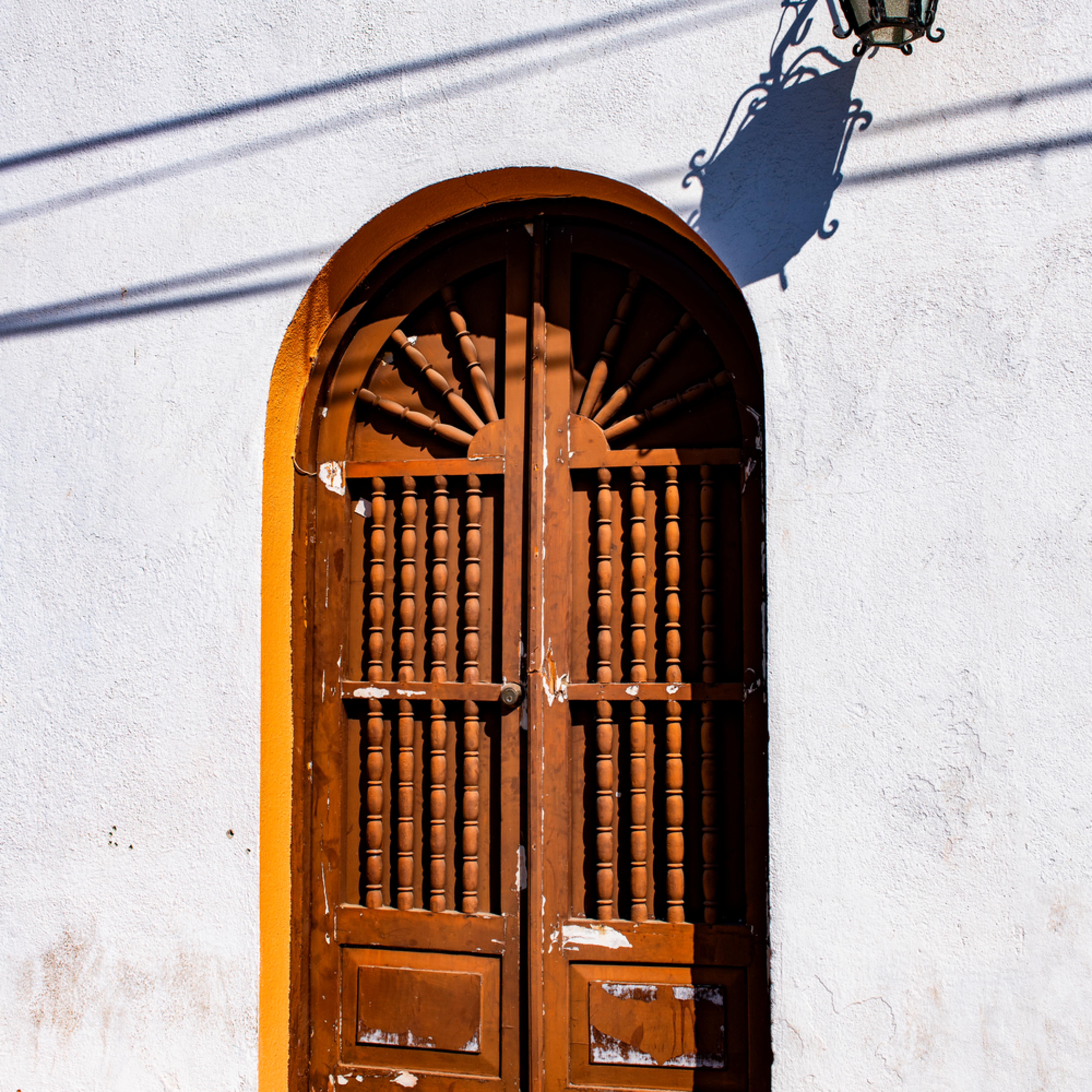 Dp577 brown door todo santos jrrdzl