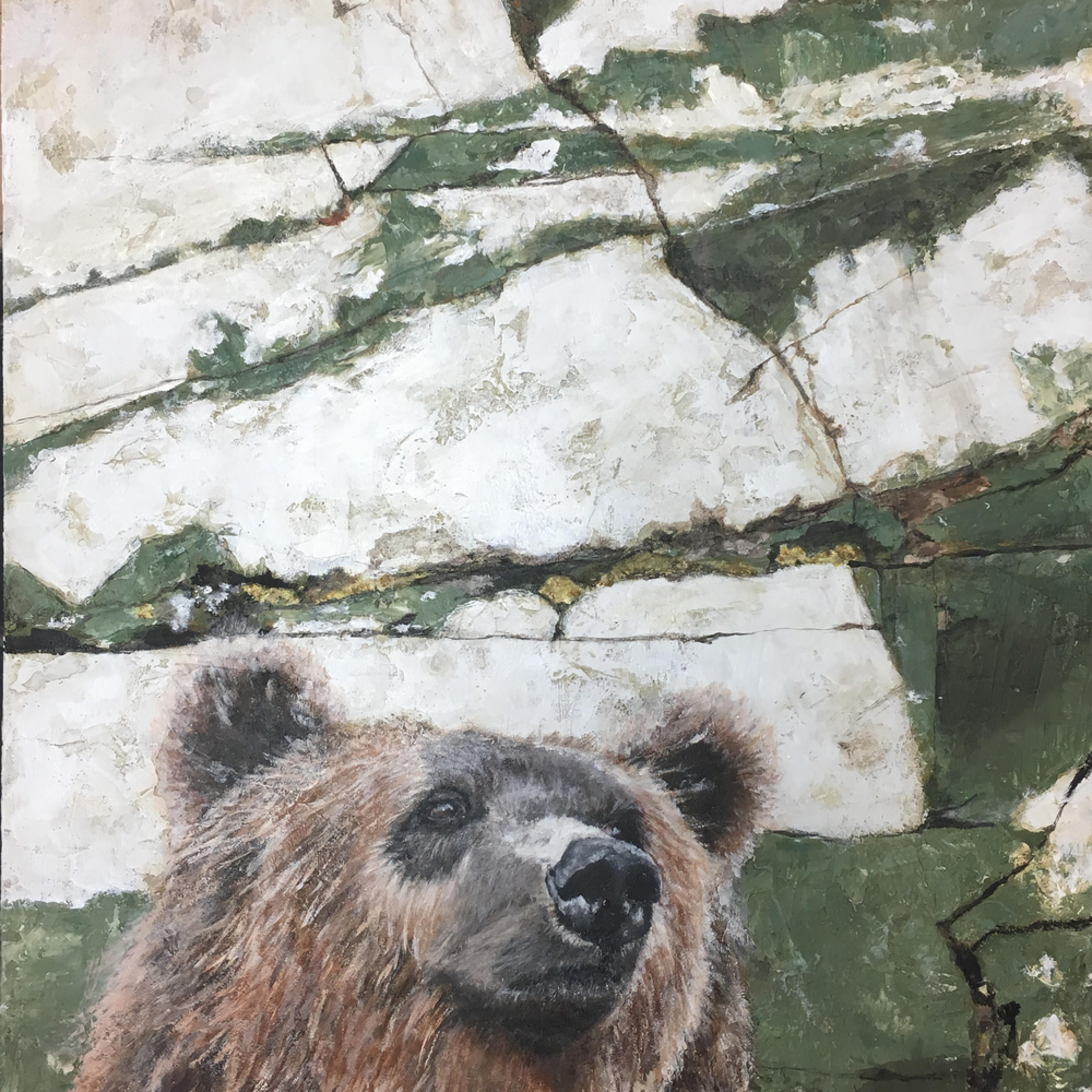 Glacier grizzly di8qwa