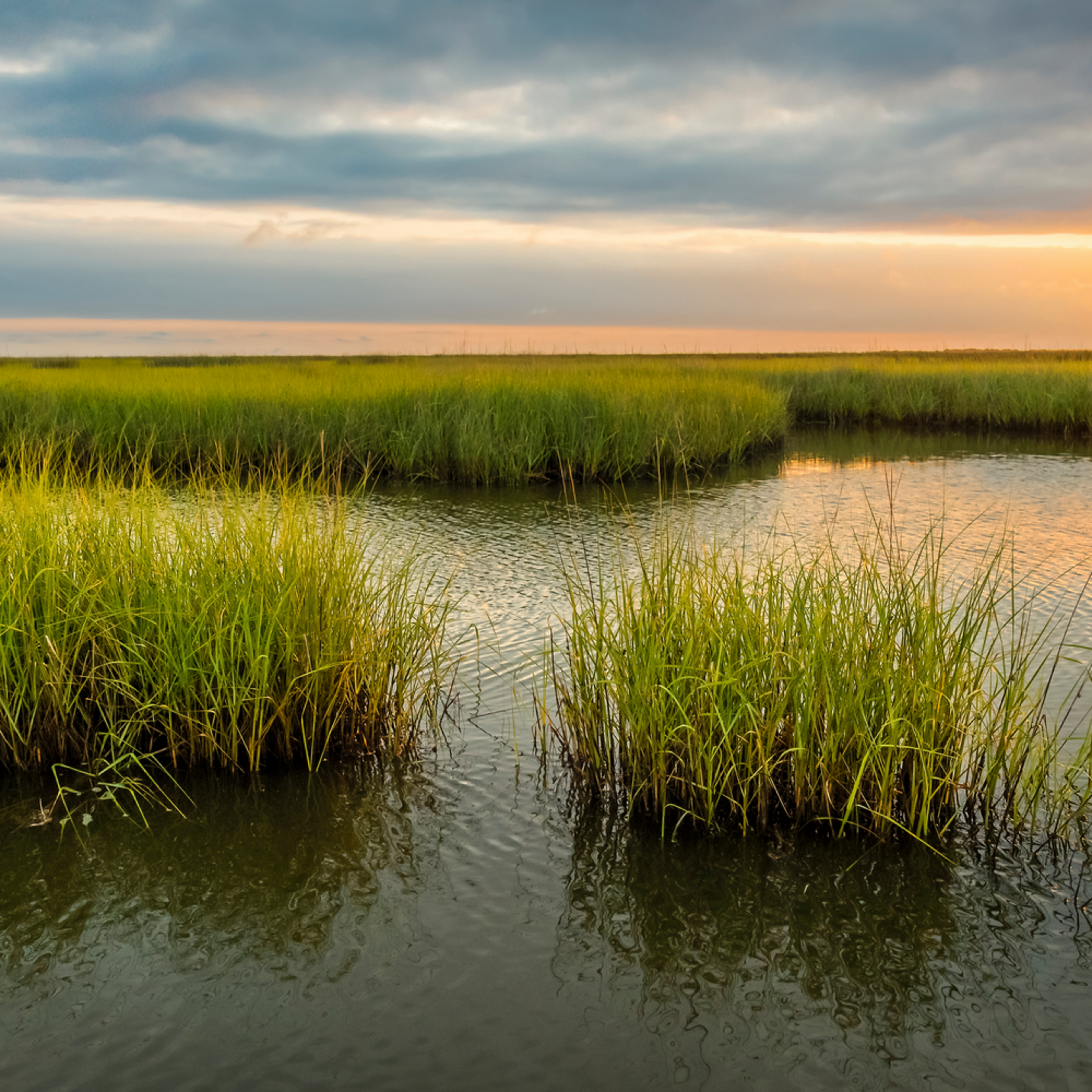 Andy crawford photography pointe aux chenes wma 0516 1 szgdux