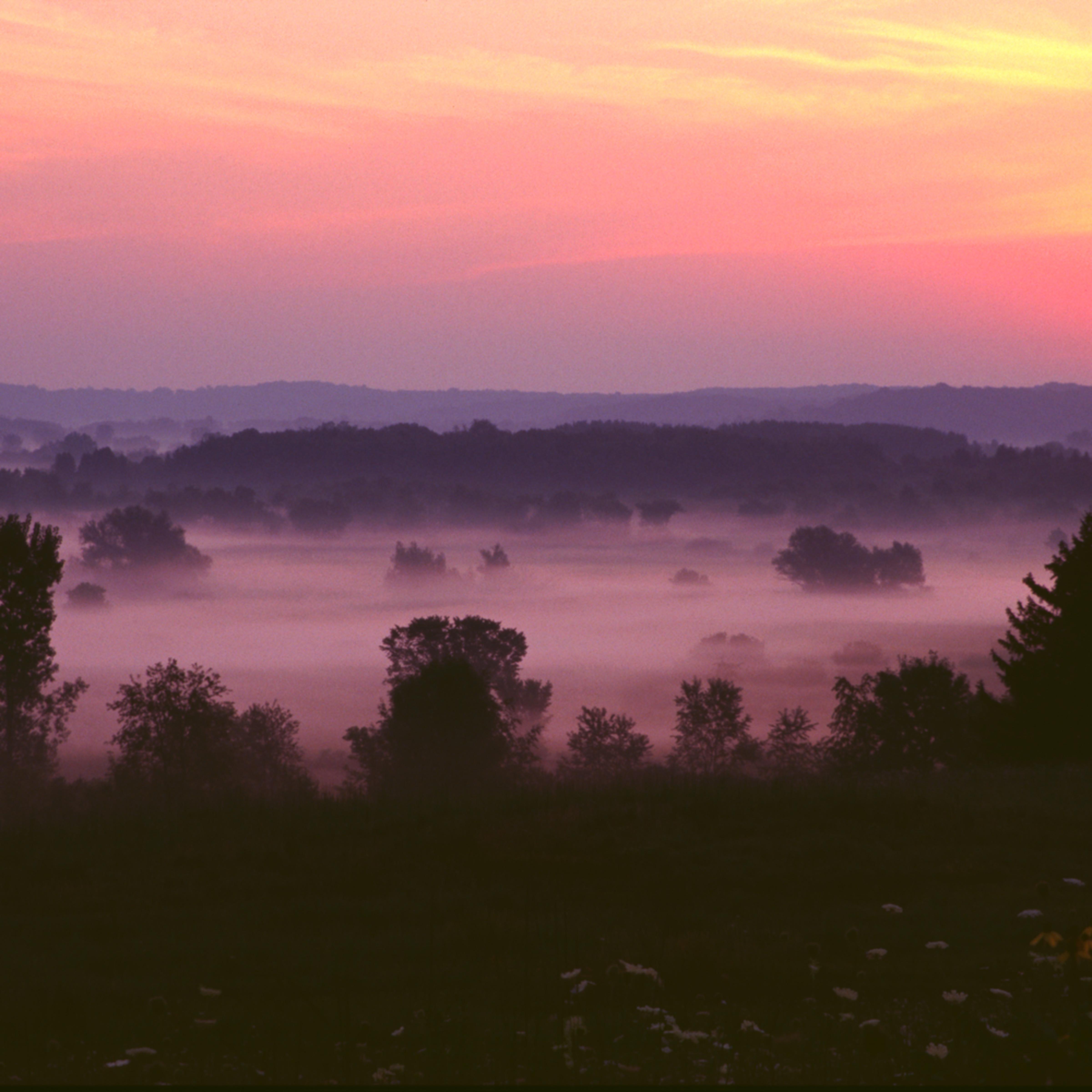 Sunrise fog j08 nid6rt