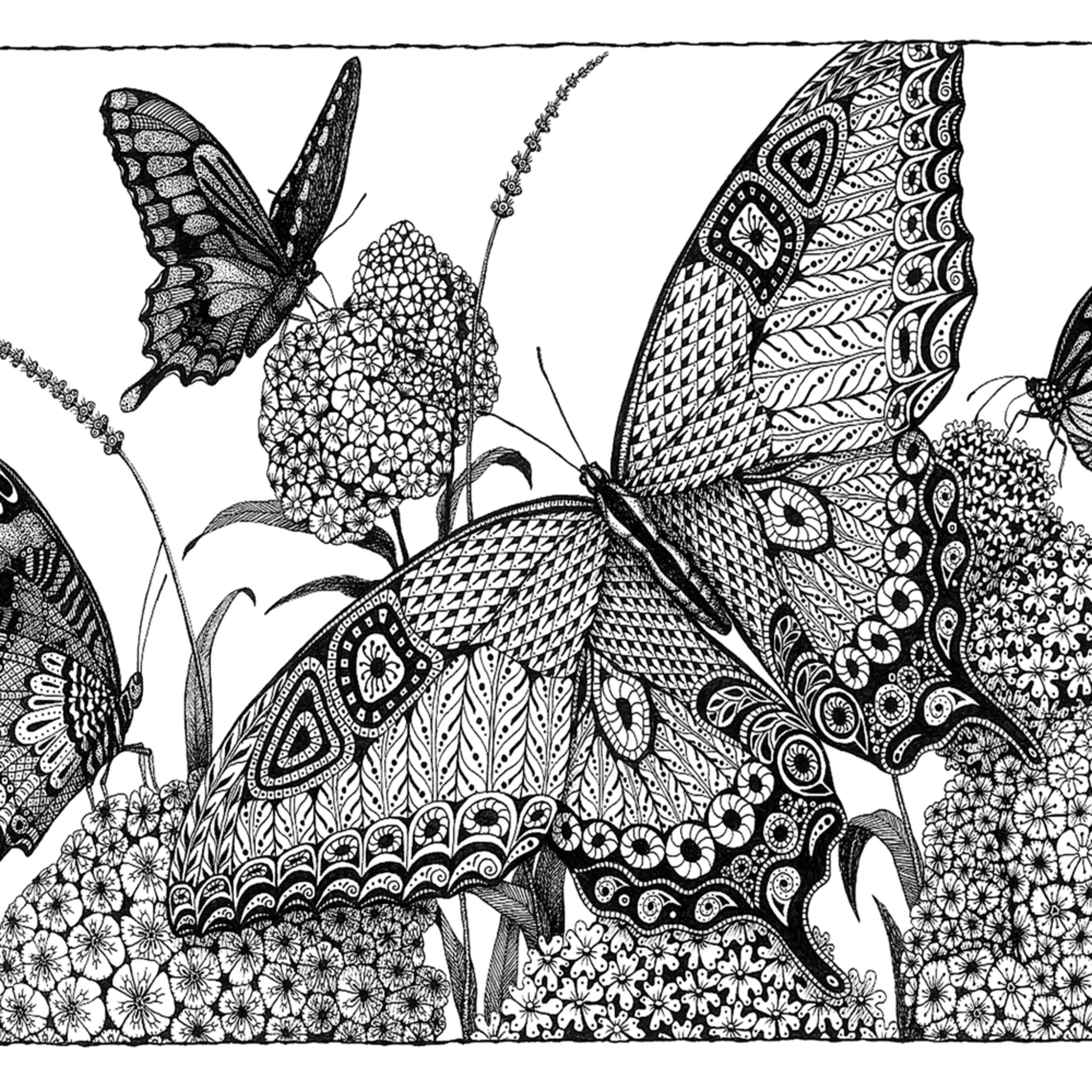 Butterflies rjsfmr