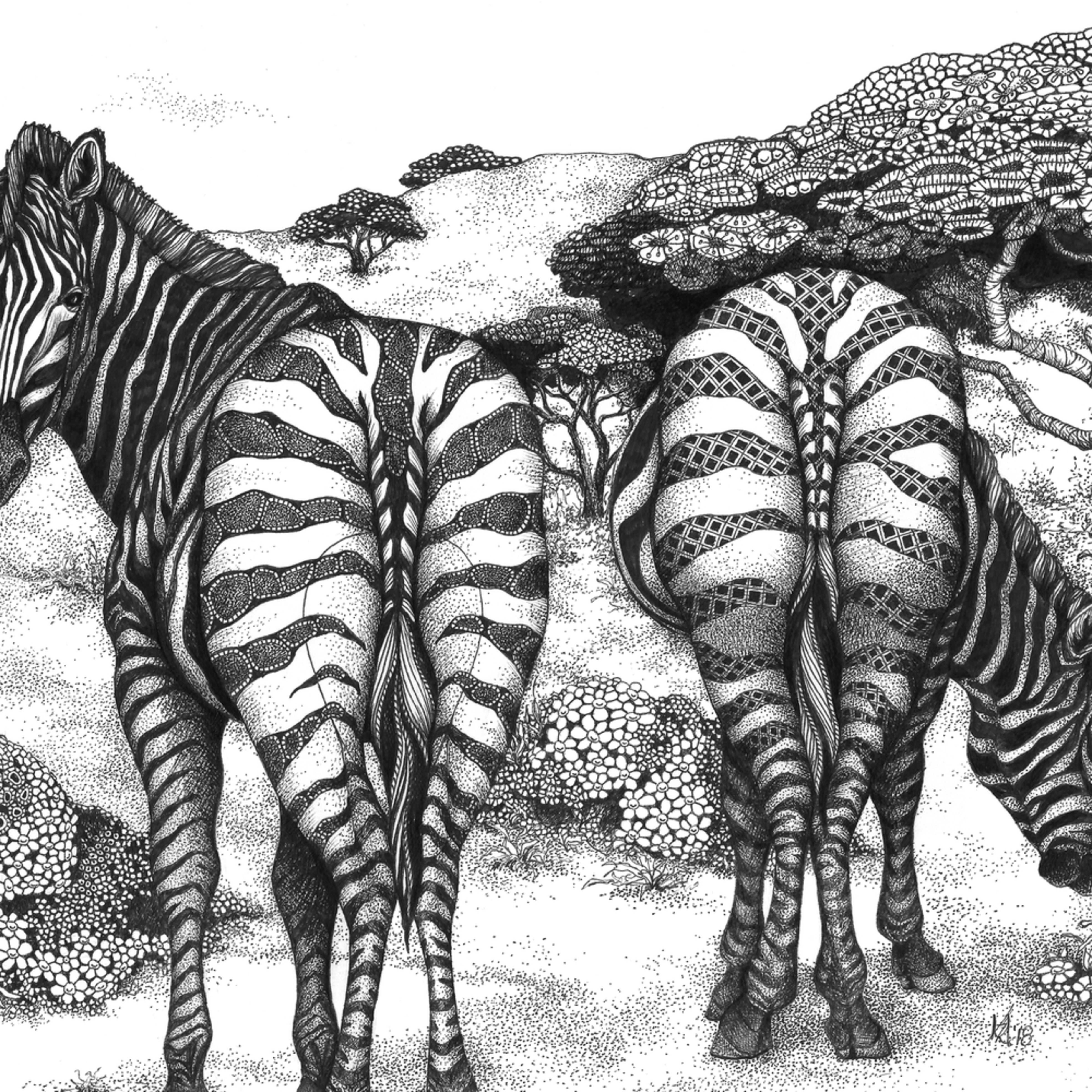 Zebra butts two of a kind o1omsj