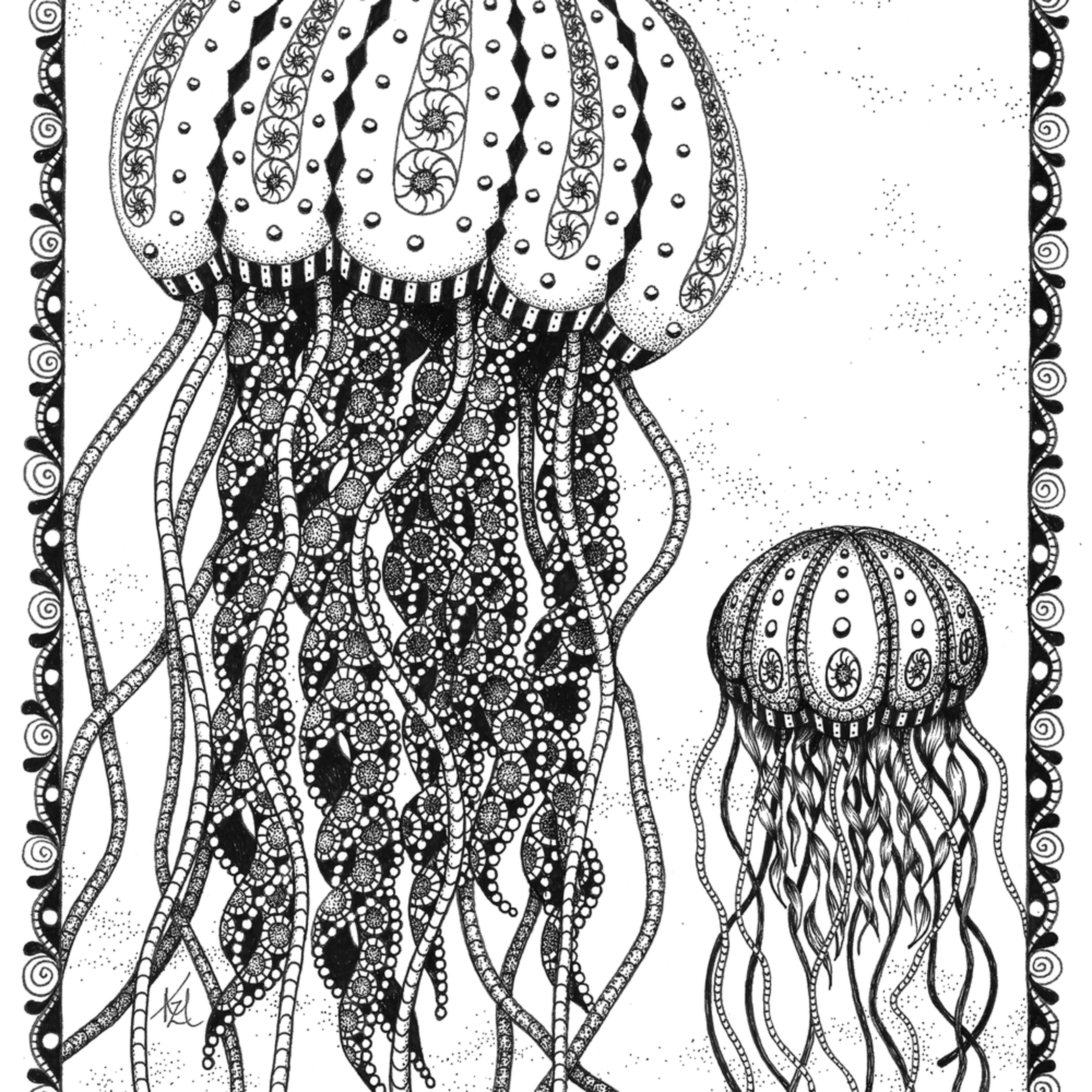 Jellyfish fd9i4i