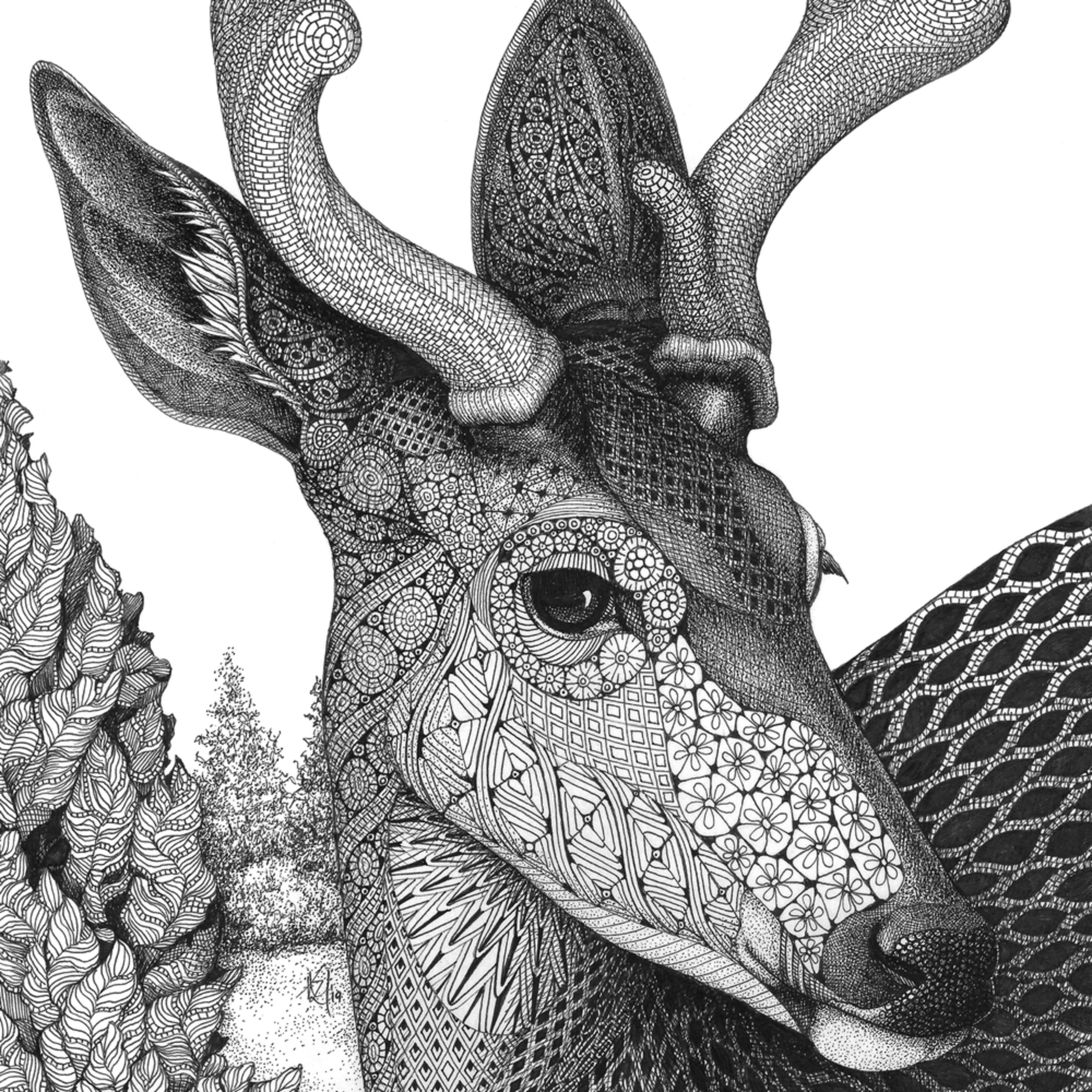 Deer head z8n2i4