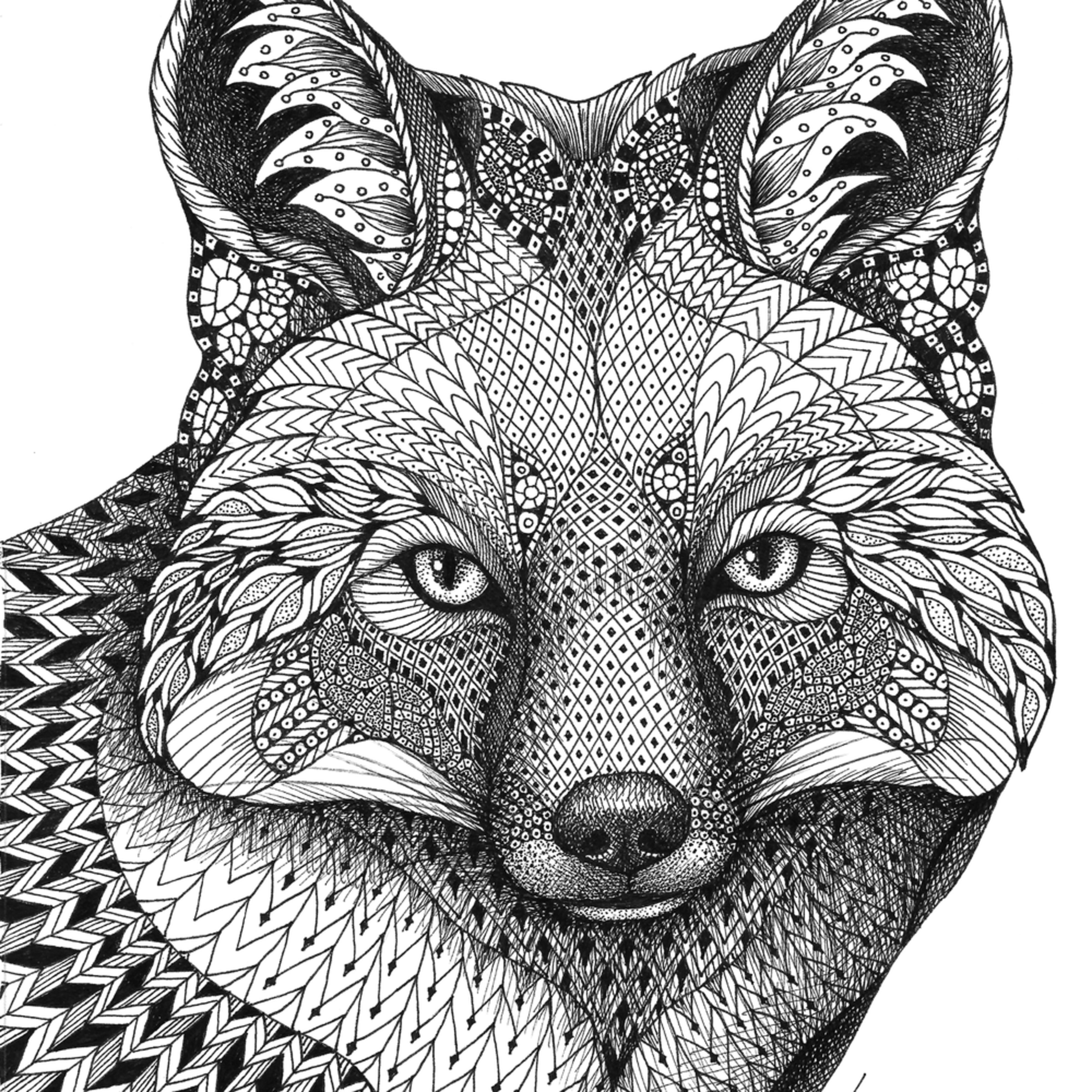 Fox tnu1o8