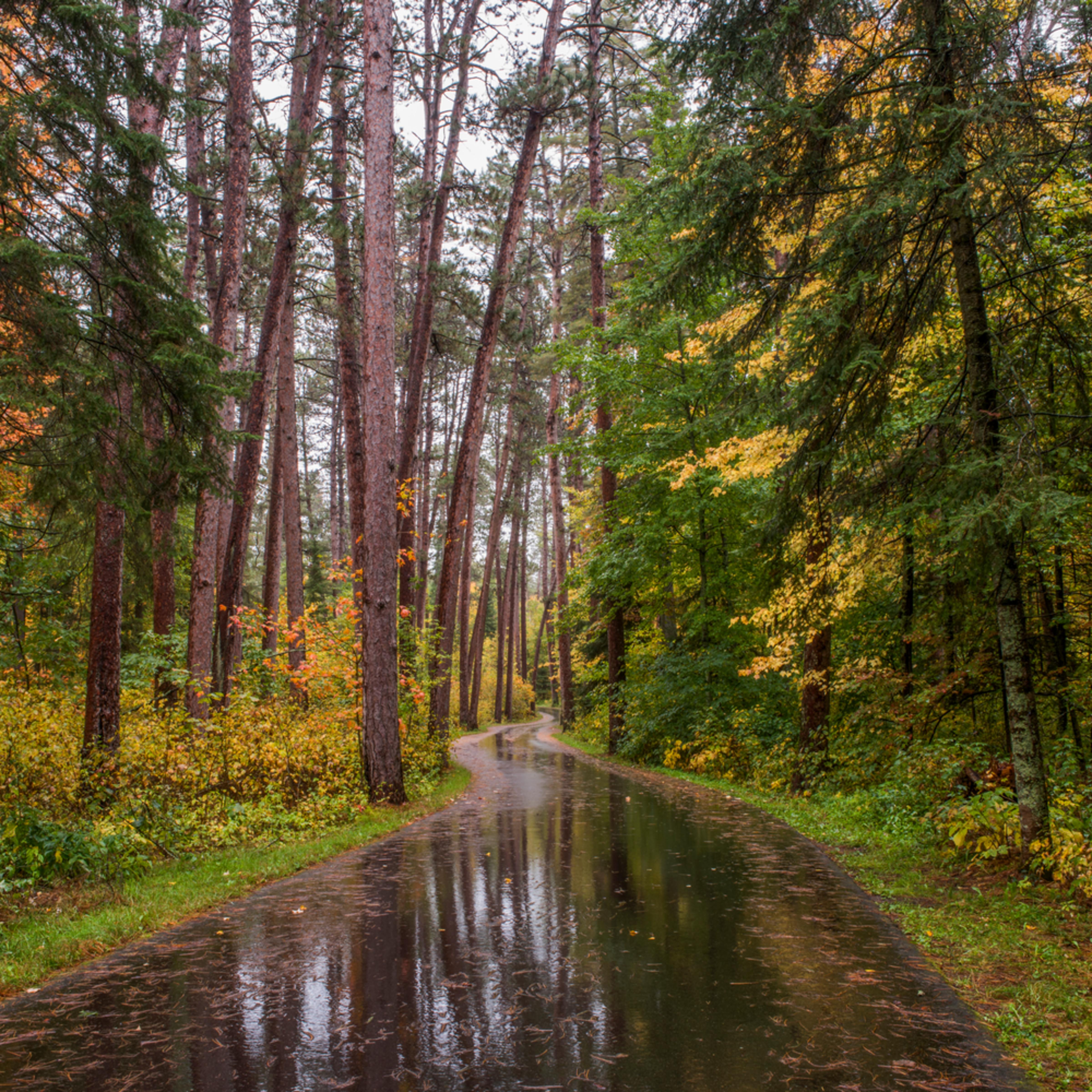 Dp621 rainy wilderness drive kfq3x3