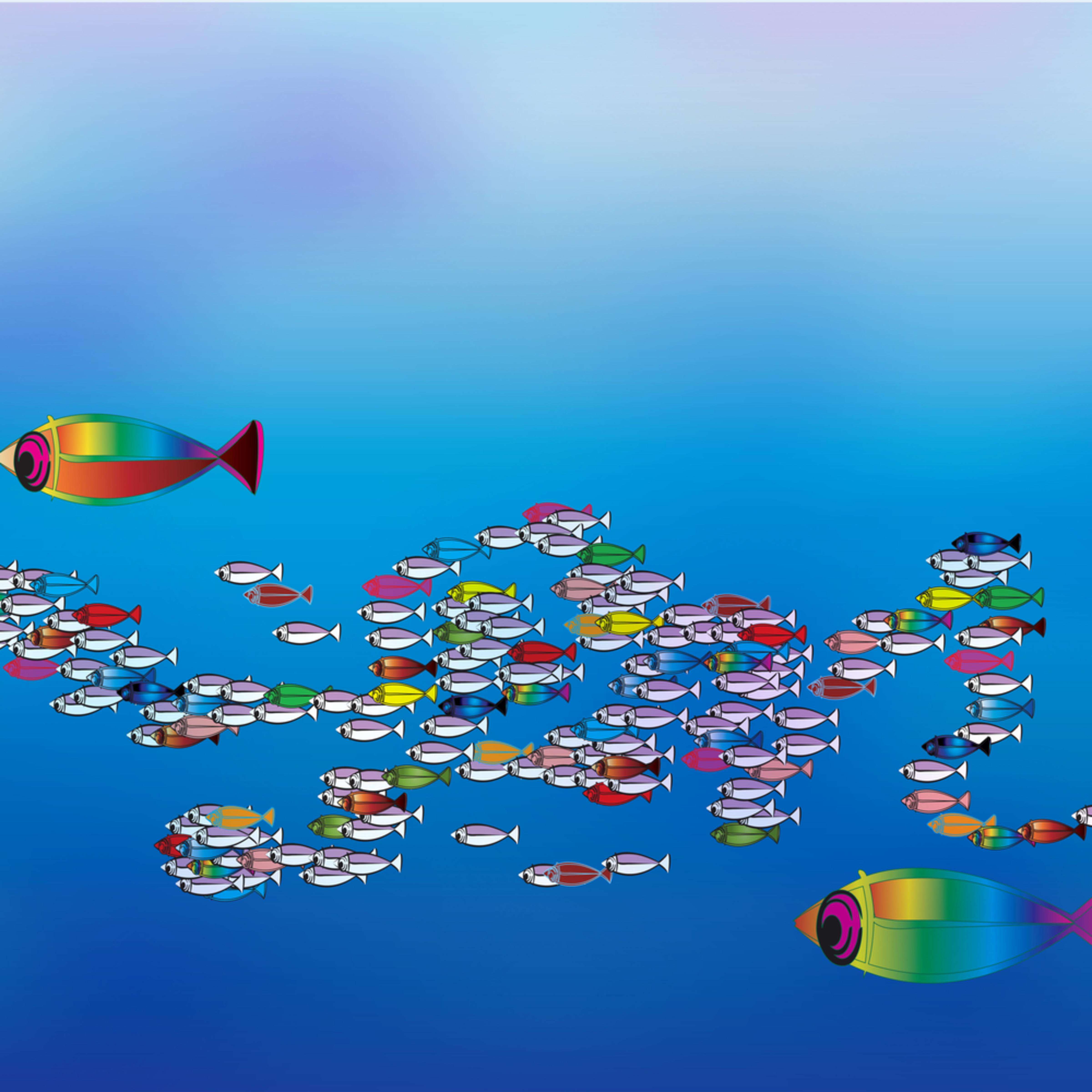 Fish utcj0r