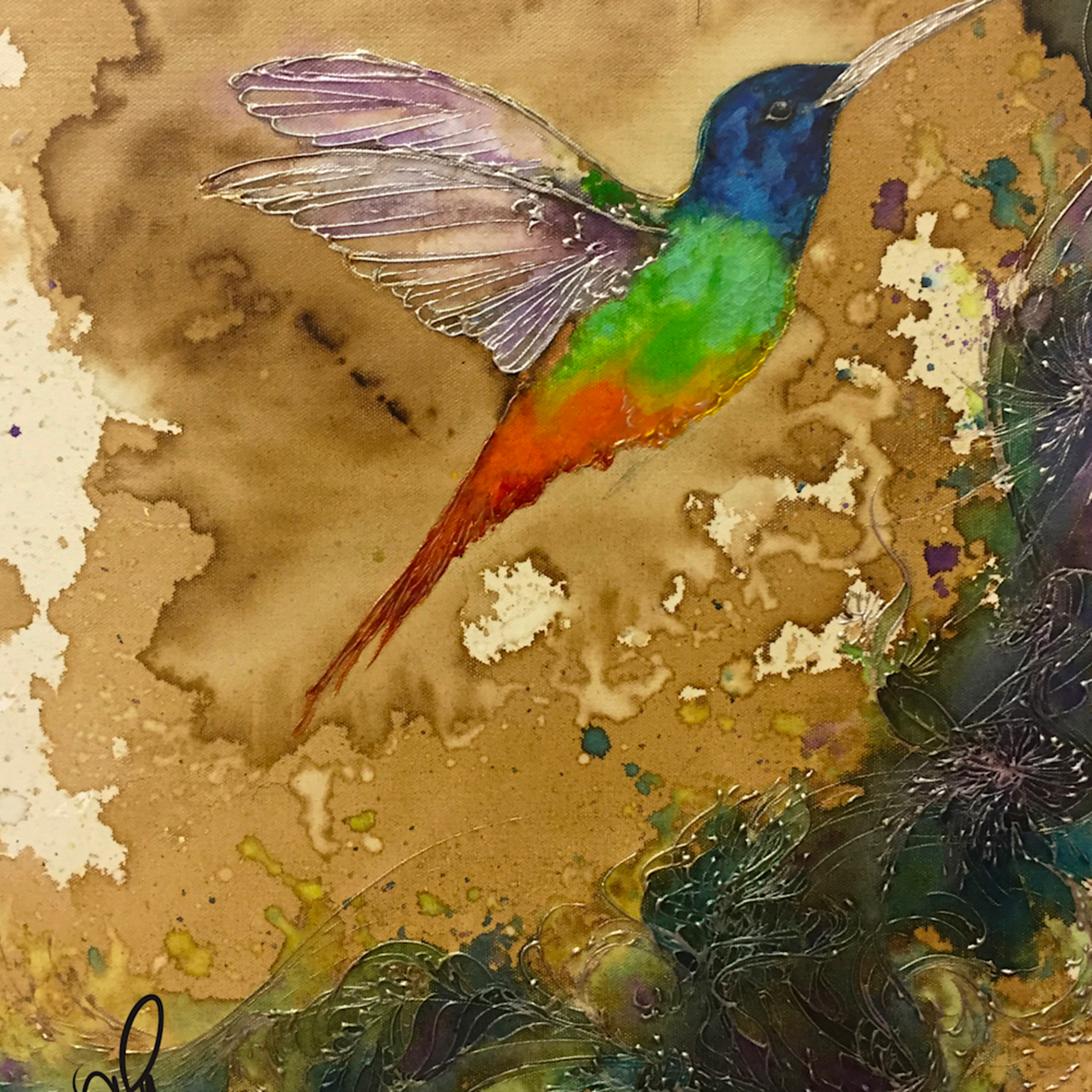 Rainbow hummingbird qfb3qk