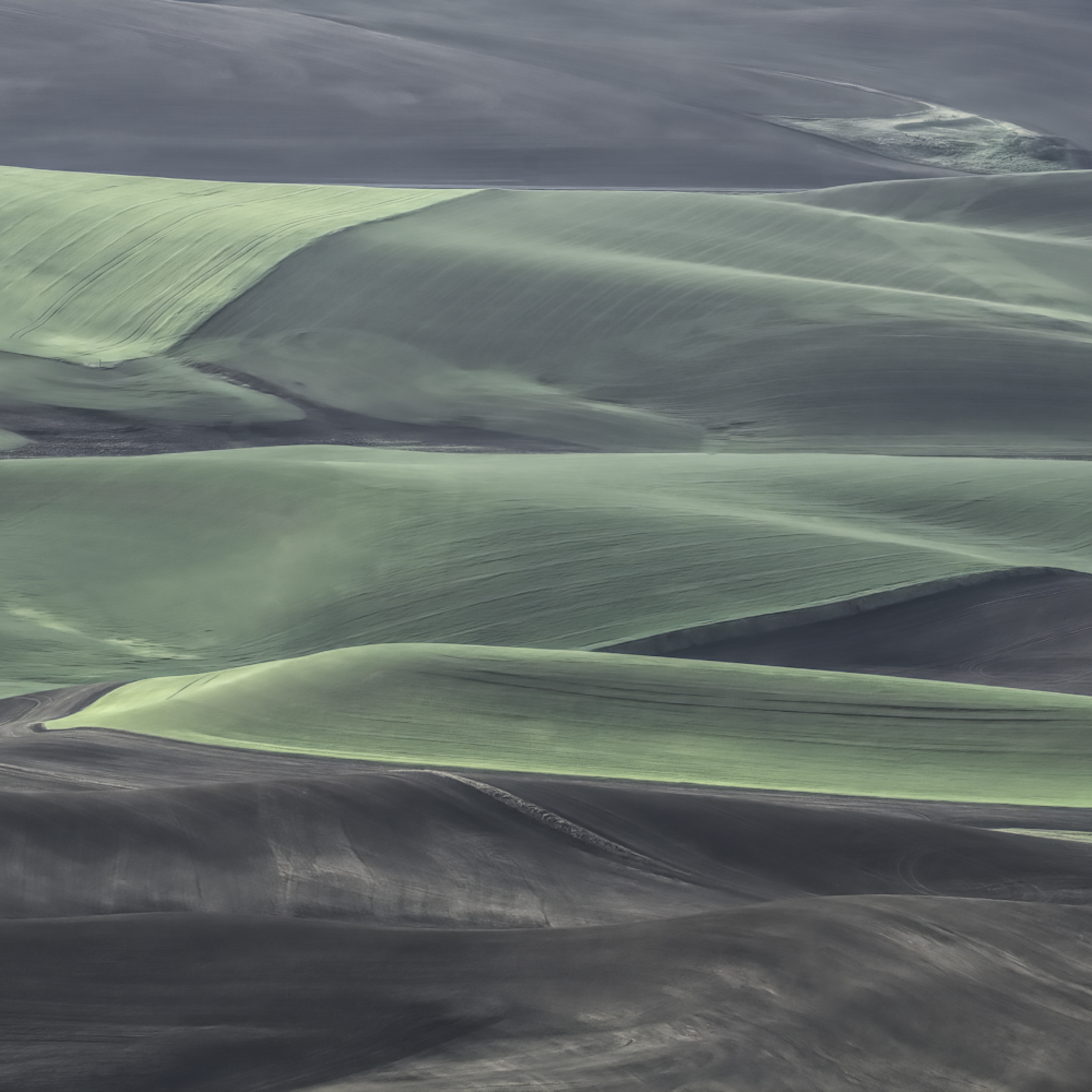 Waves of green in a sea of black hd4yus