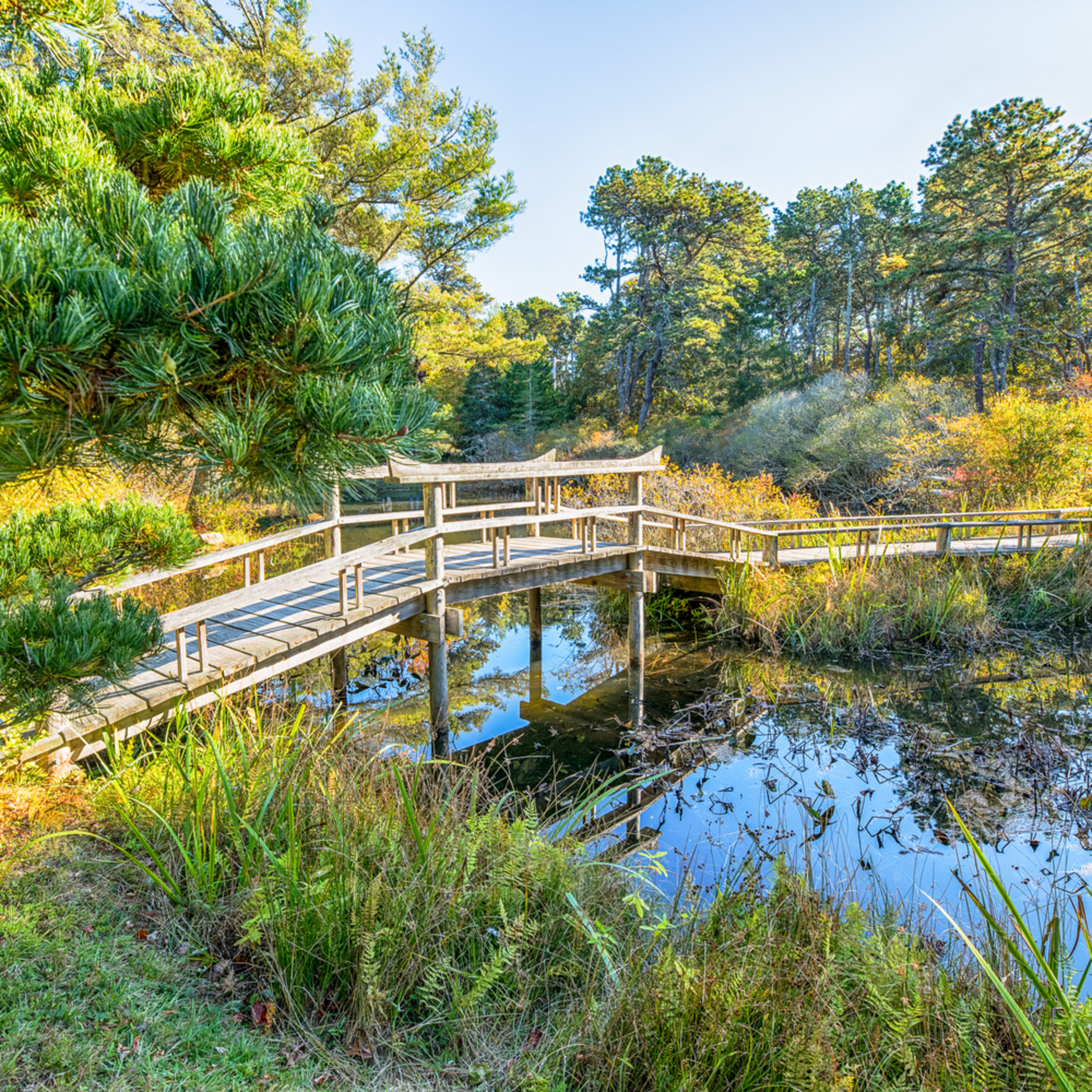 Mytoi fall bridge vakpsh