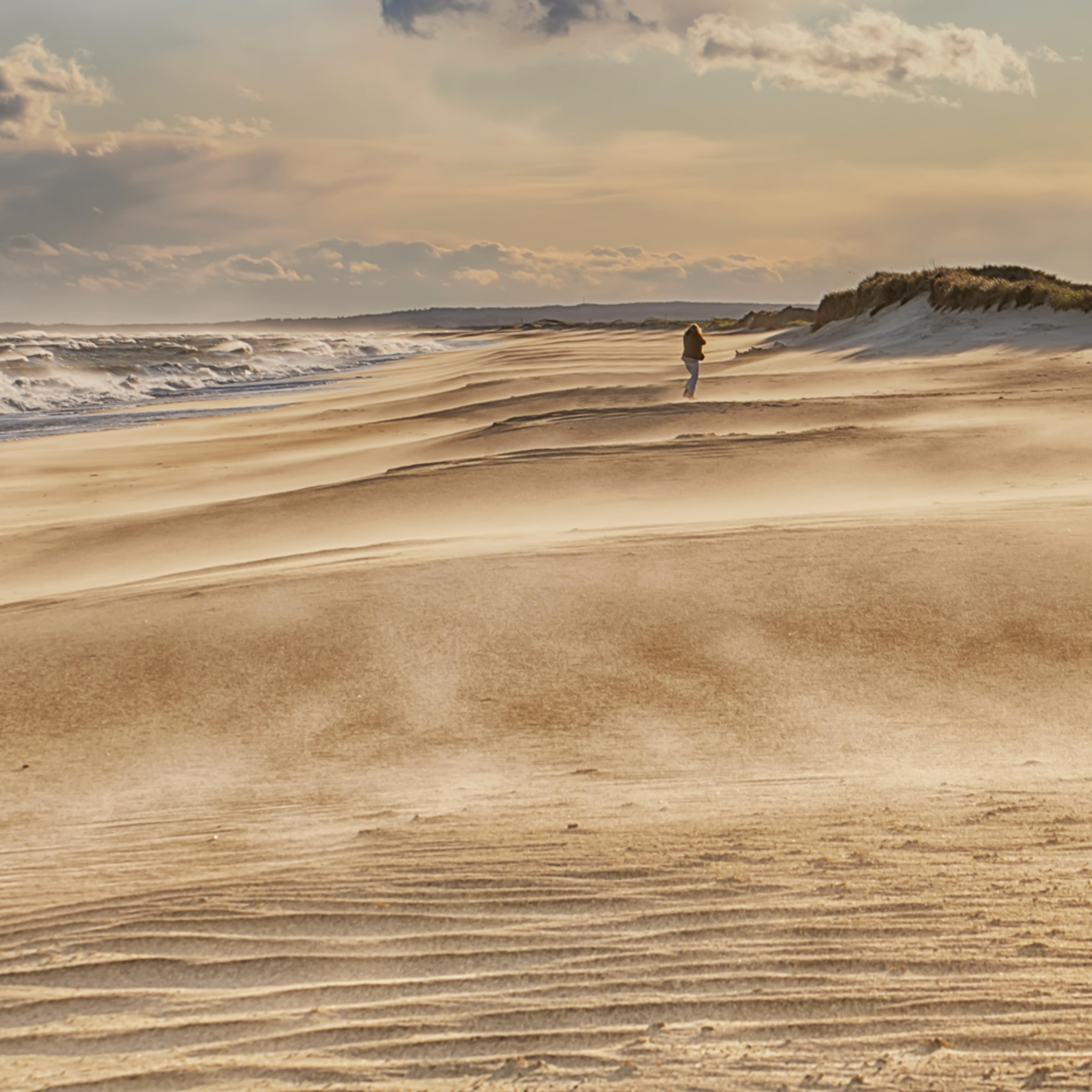 South beach against the wind j0lxqw