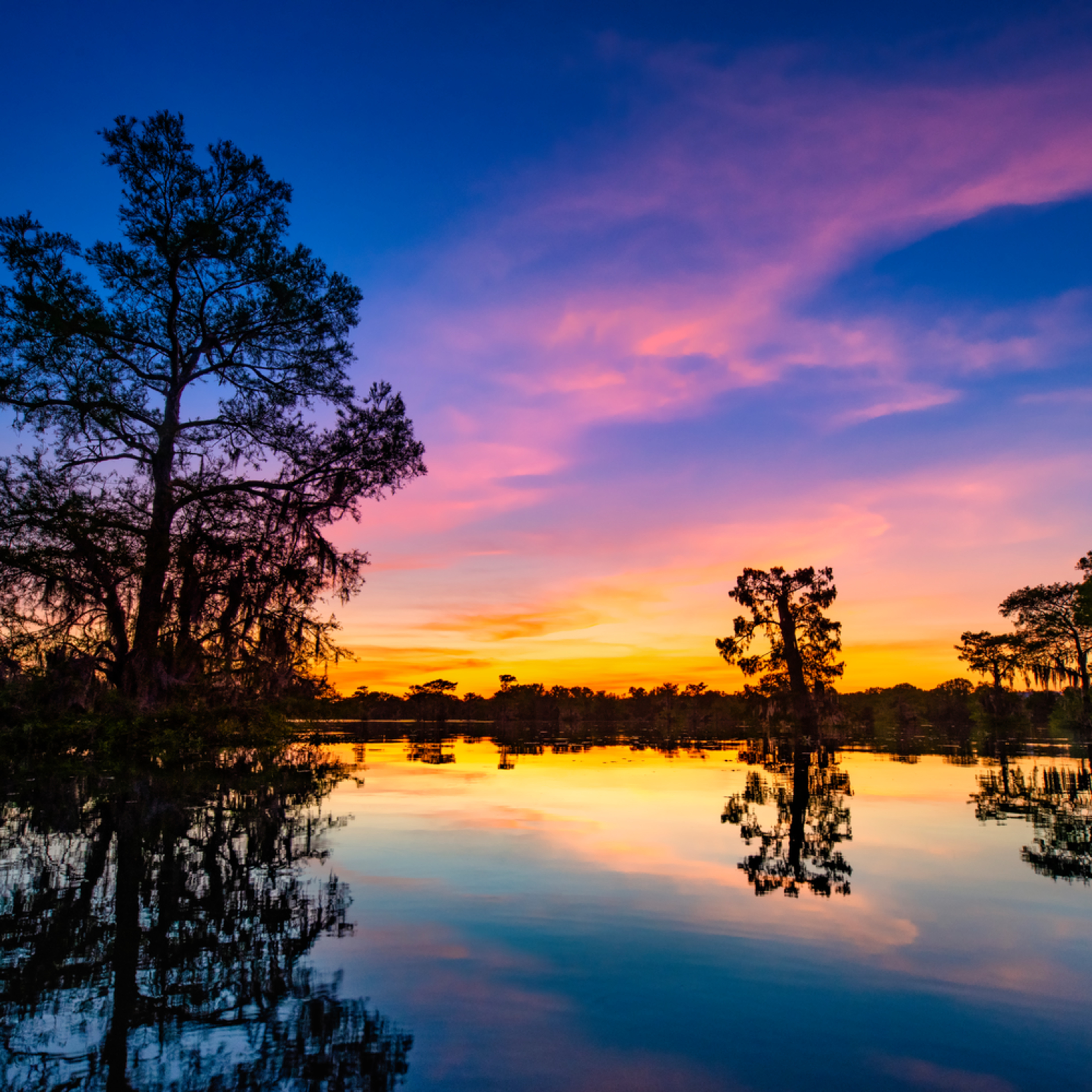 Andy crawford photography sunset over henderson swamp sxa5xo