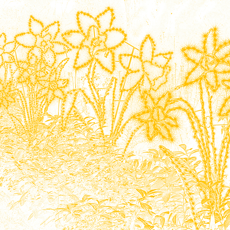 Butterybuttercups neoju7