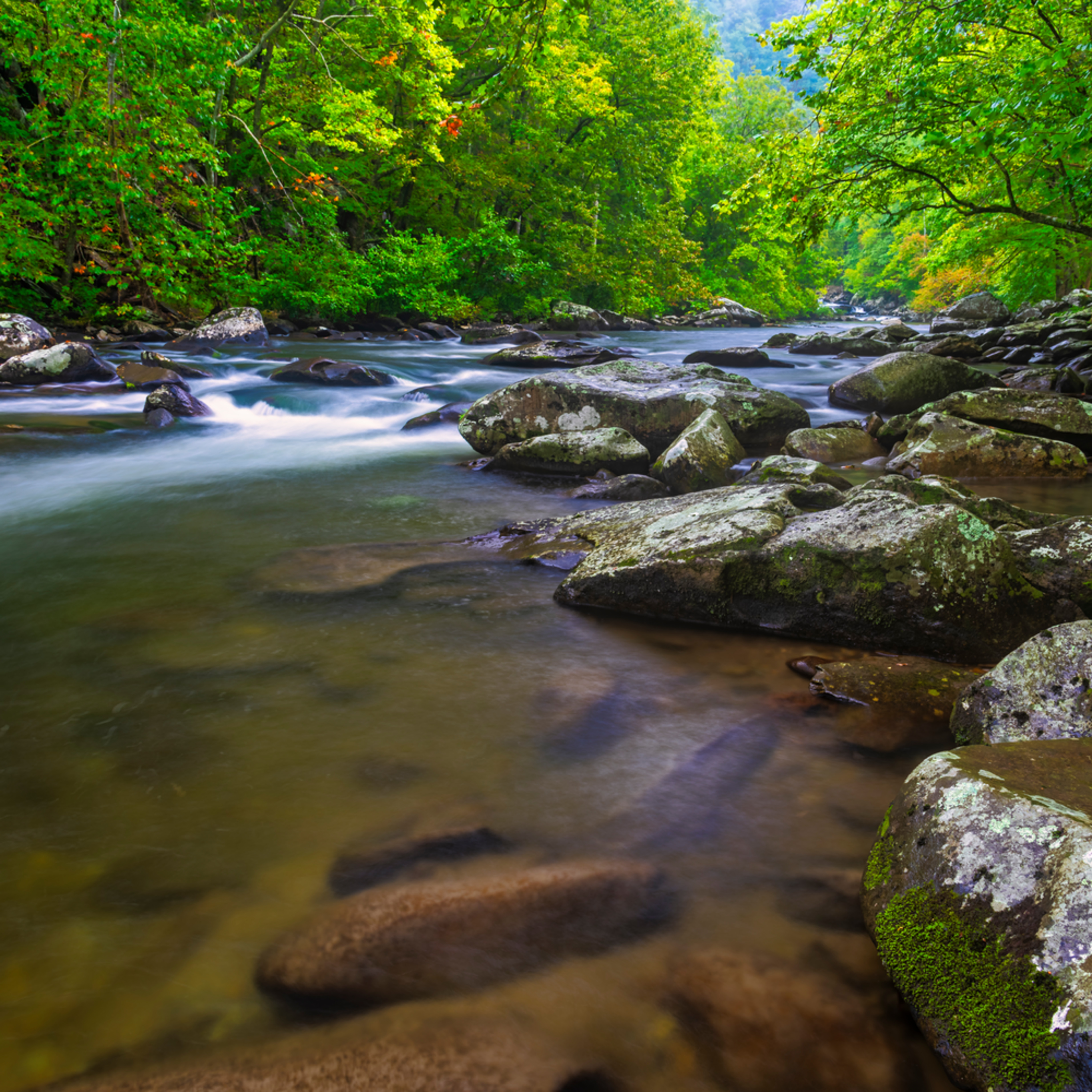 Andy crawford photography tellico river 004 hawgrx