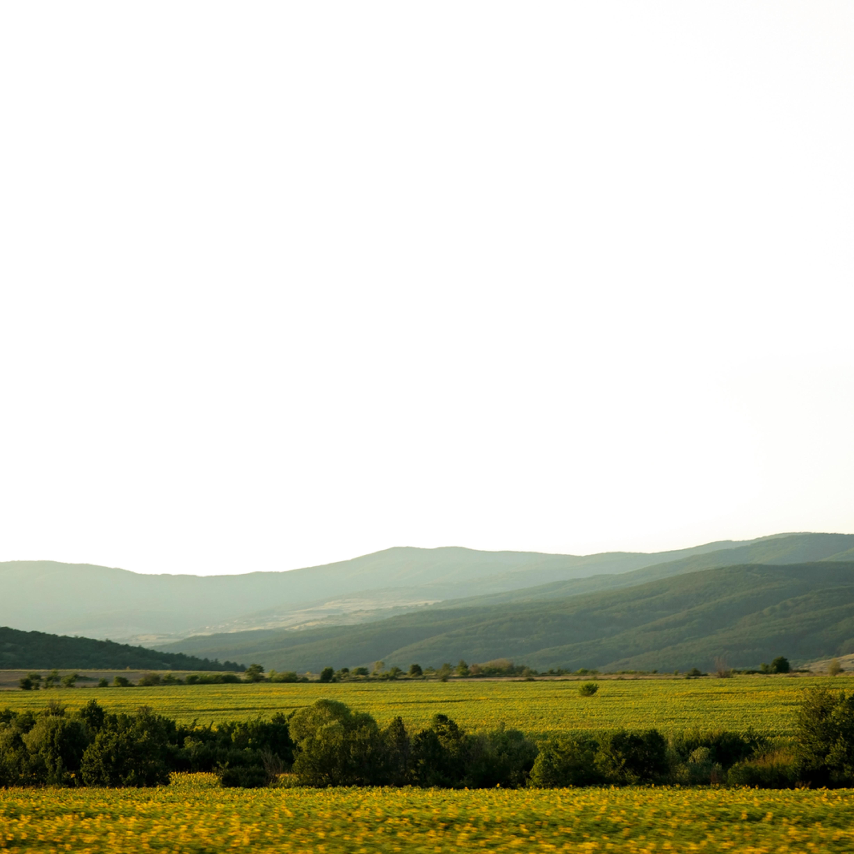 Silent landscape 9 fine art print silvia nikolov saov4u