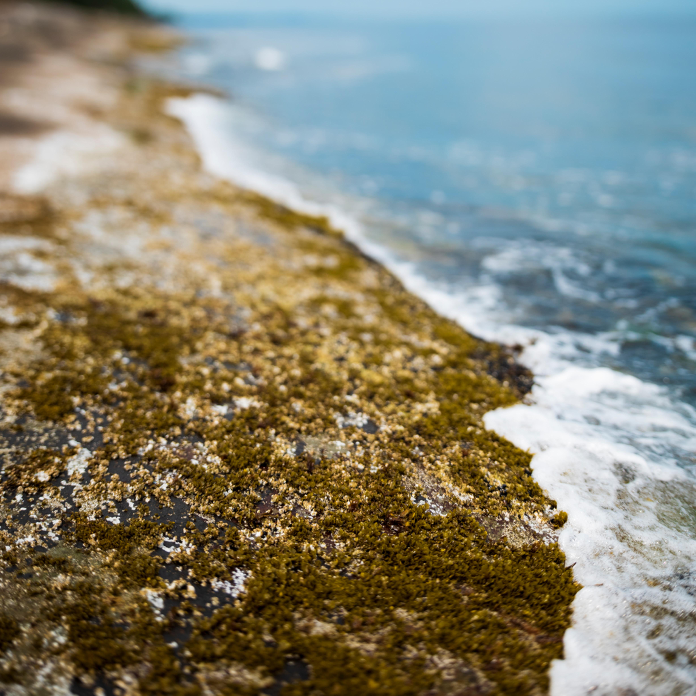 Shoreline acchpn