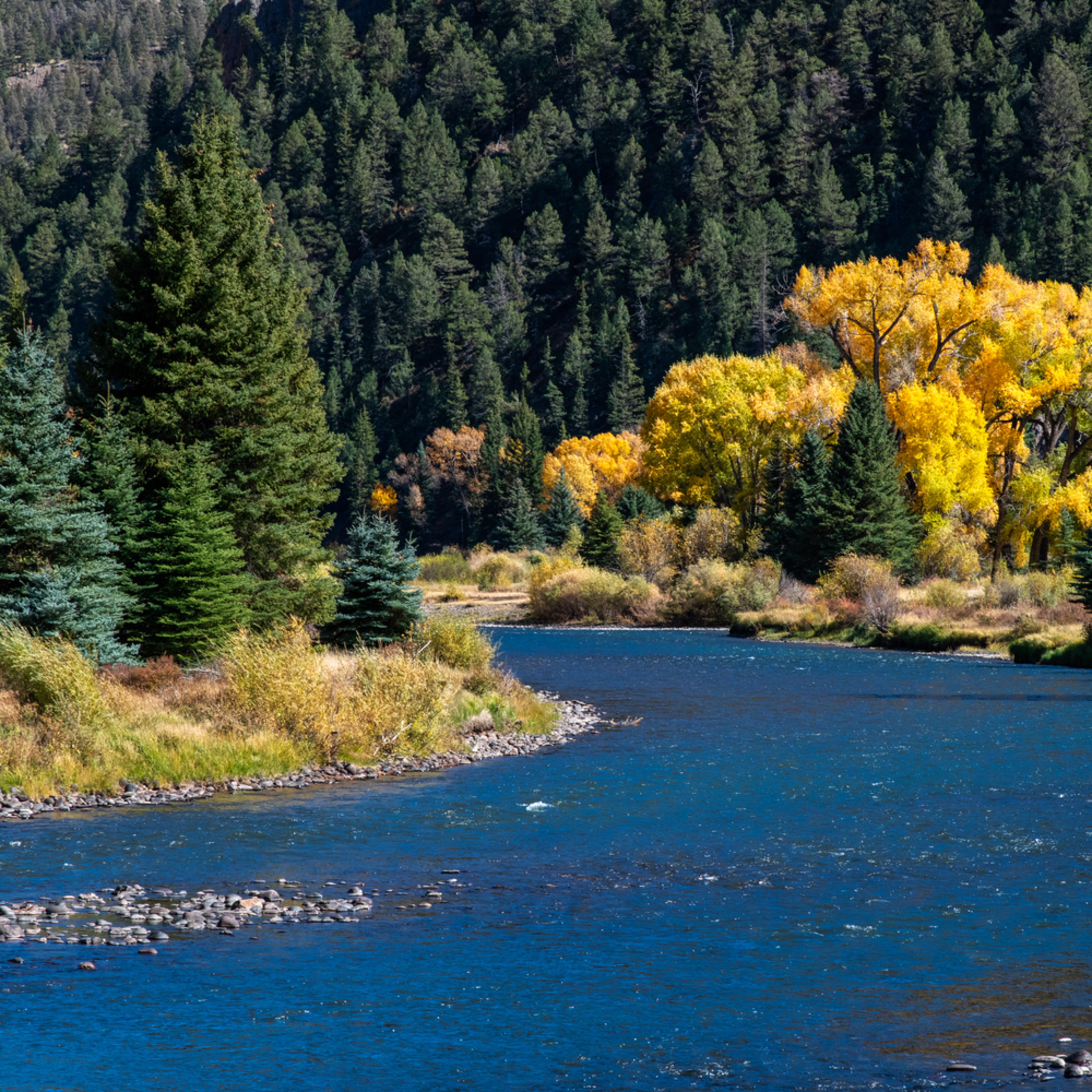 Andy crawford photography colorado rio grande river 2 wg6jmx