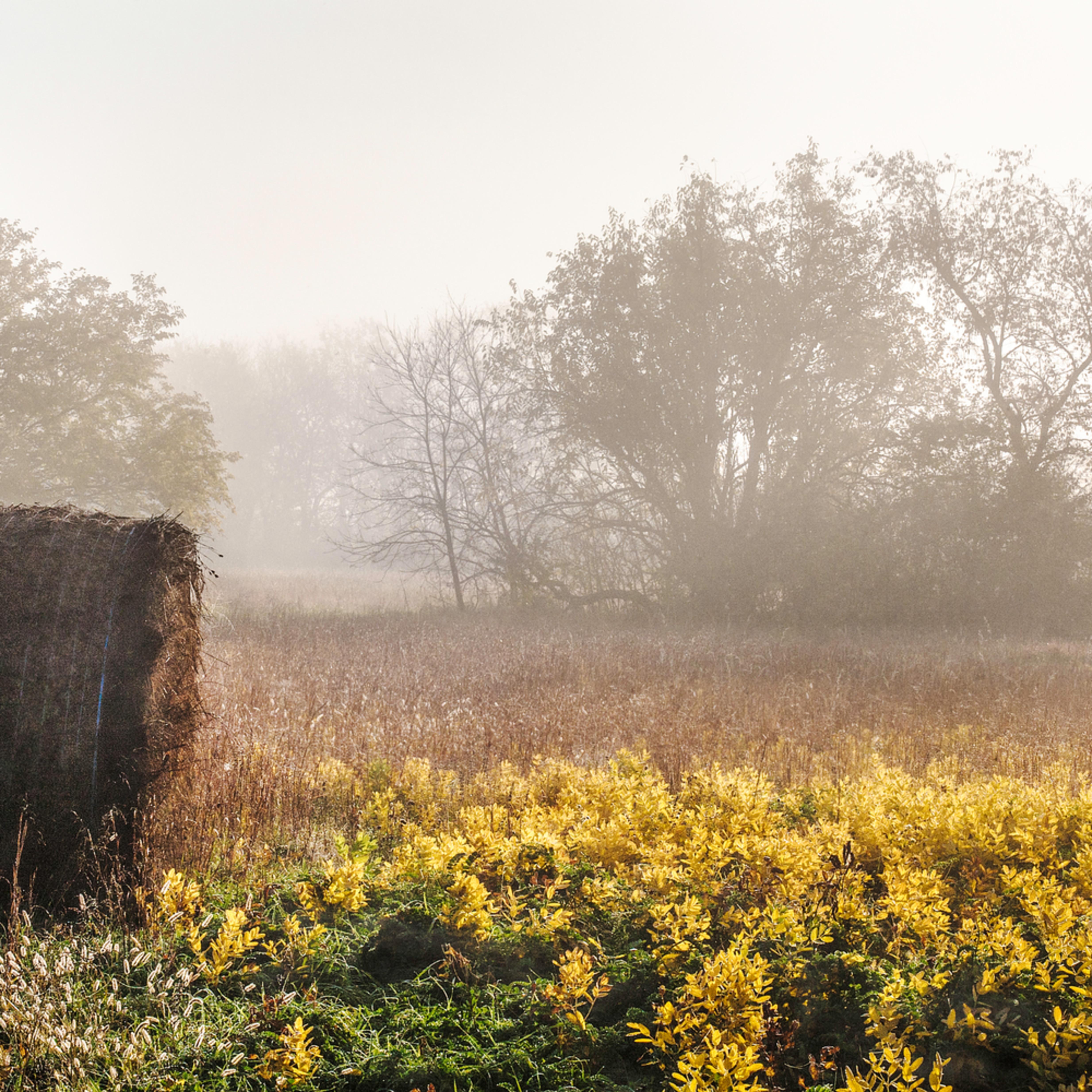 Hay bales and autumn fog 1 zbsm9t