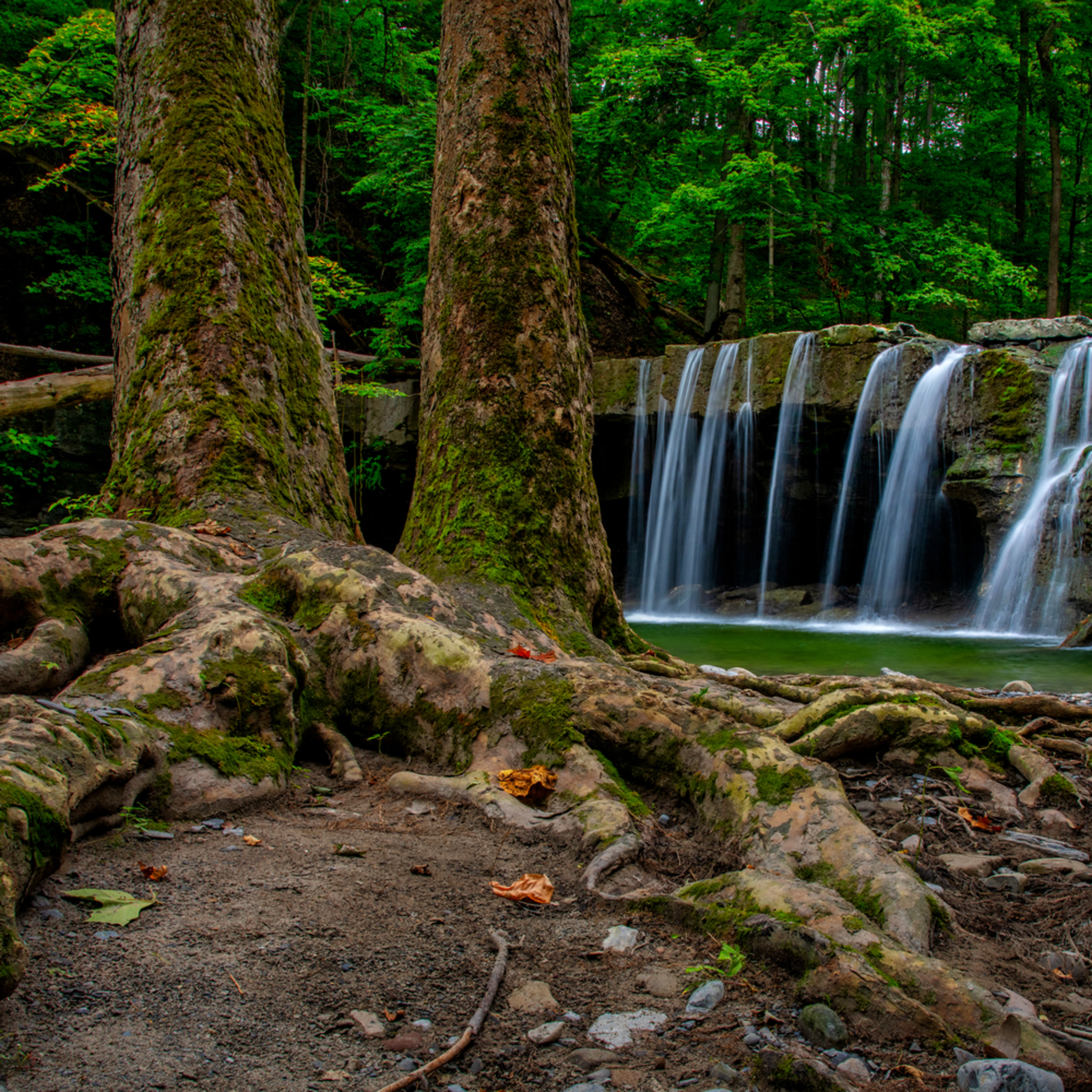 Andy crawford photography great gully creek waterfall svrhhr