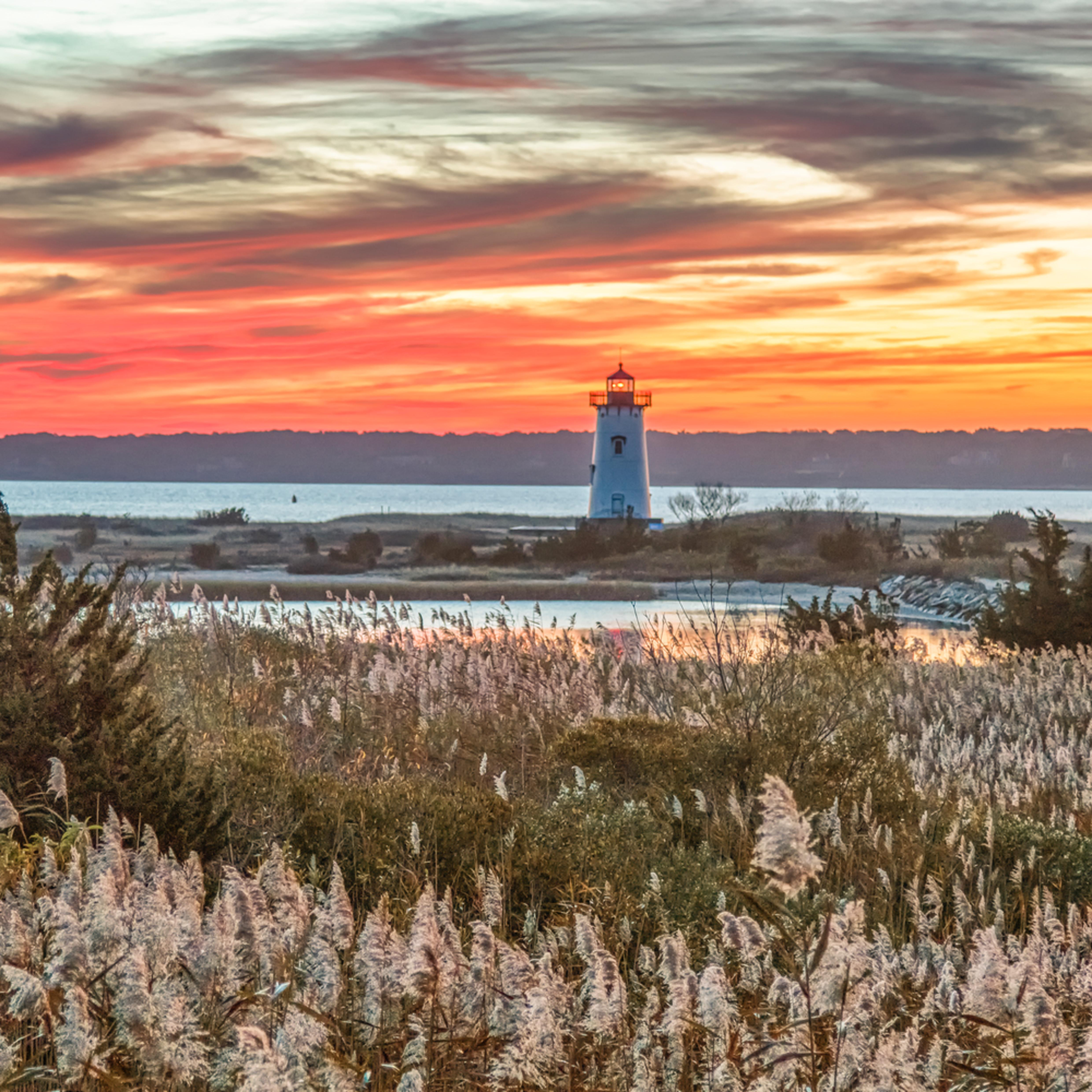 Edgartown light fall reeds dclief