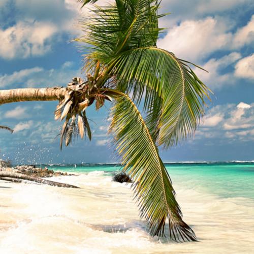 Anguilla serenity fc7dxe