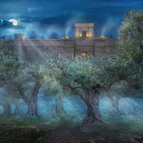 Garden of gethsemane robert a boyd web xopxrx