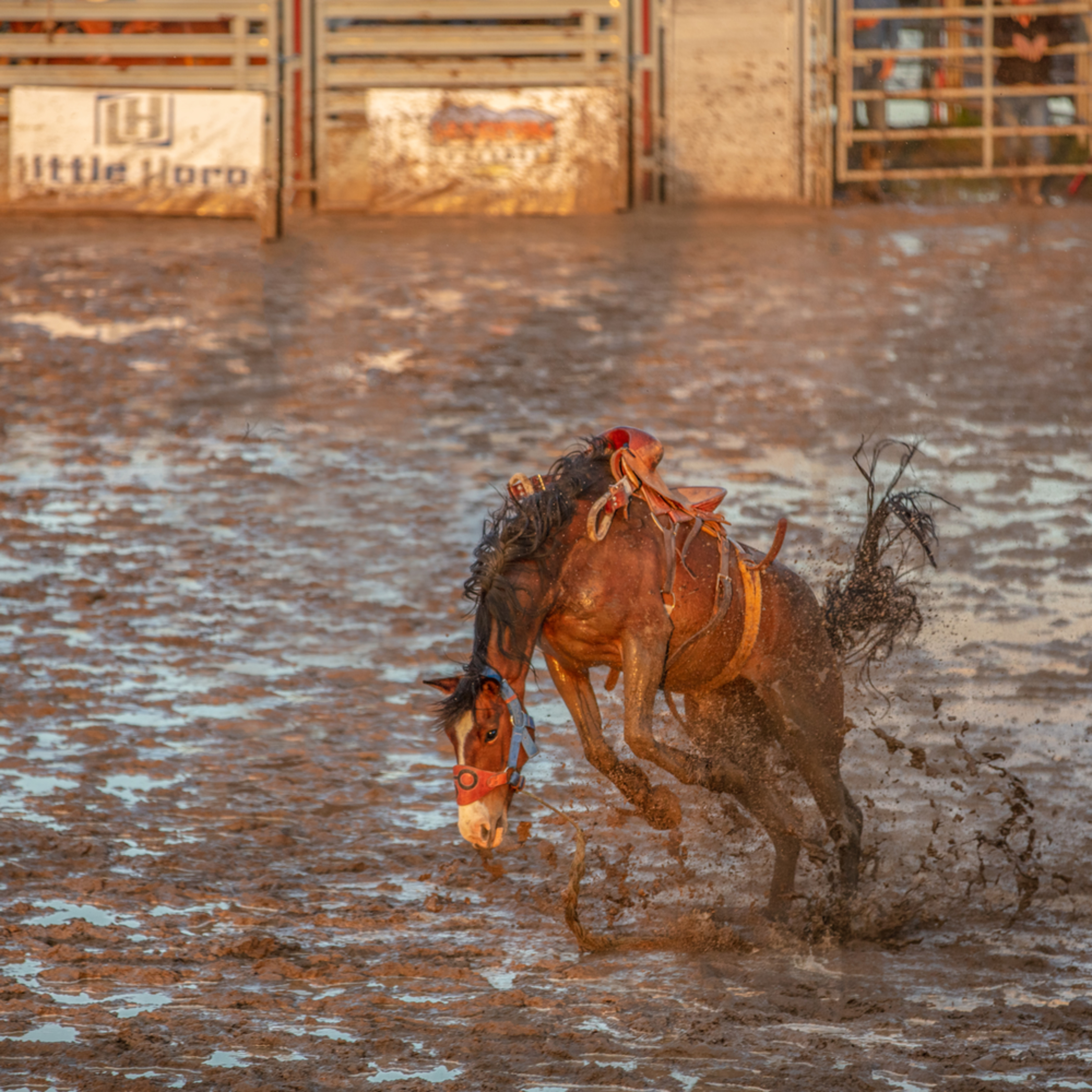 Broncs 1 cowboys 0 weather slight chance of rain apsbkn