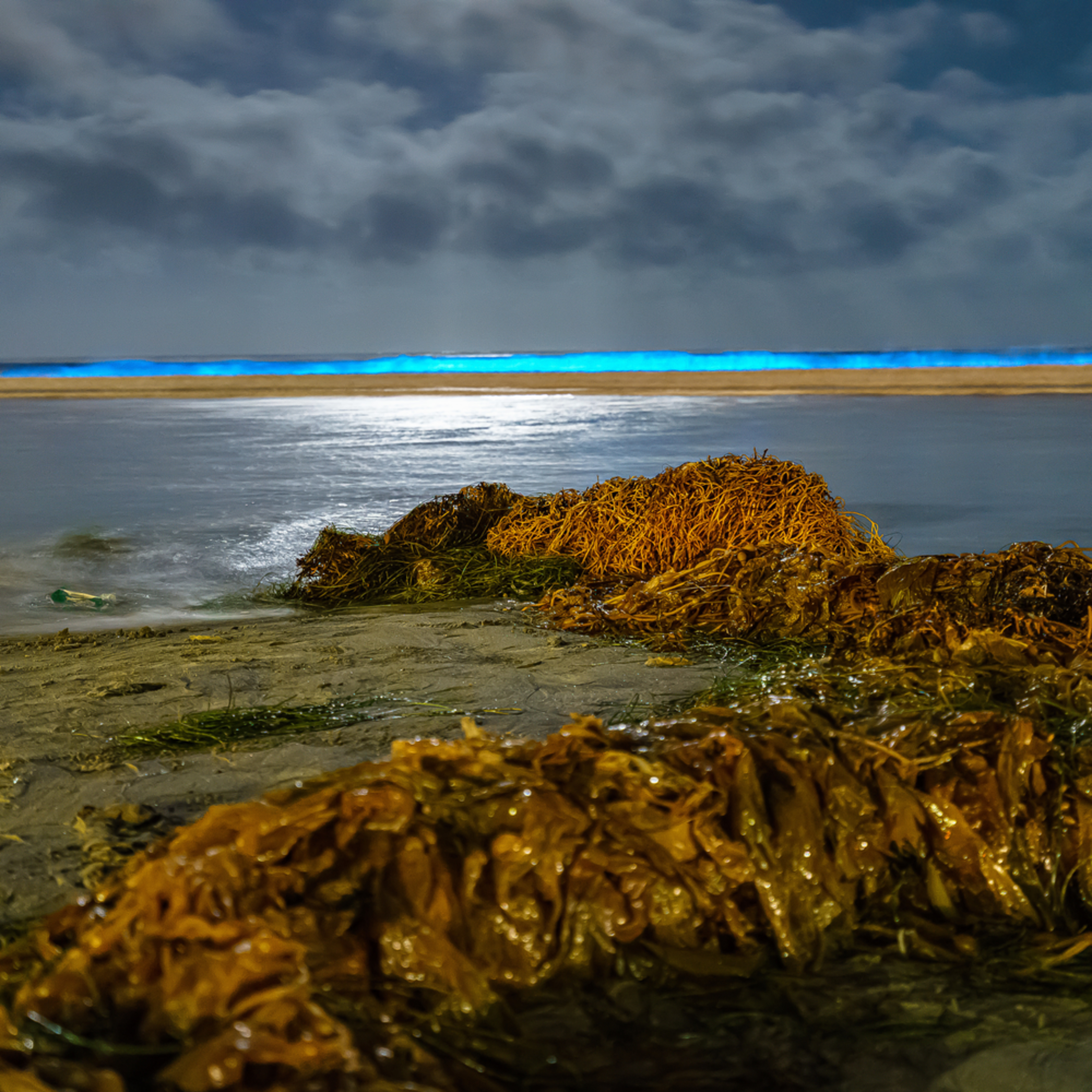 La jolla shores bio luminescence three 5 2 2020 zrys3c