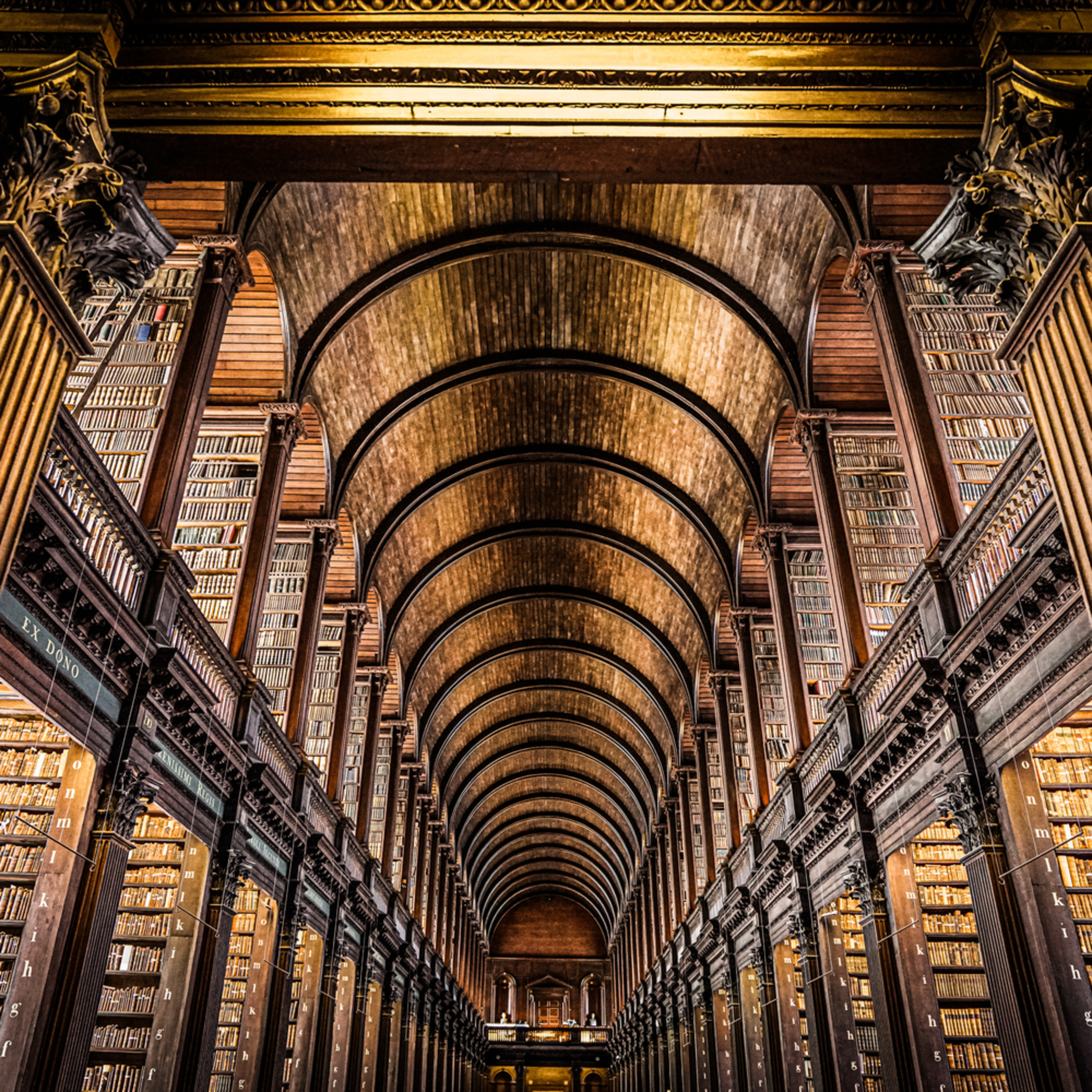 The long room at trinity college ndtuyv