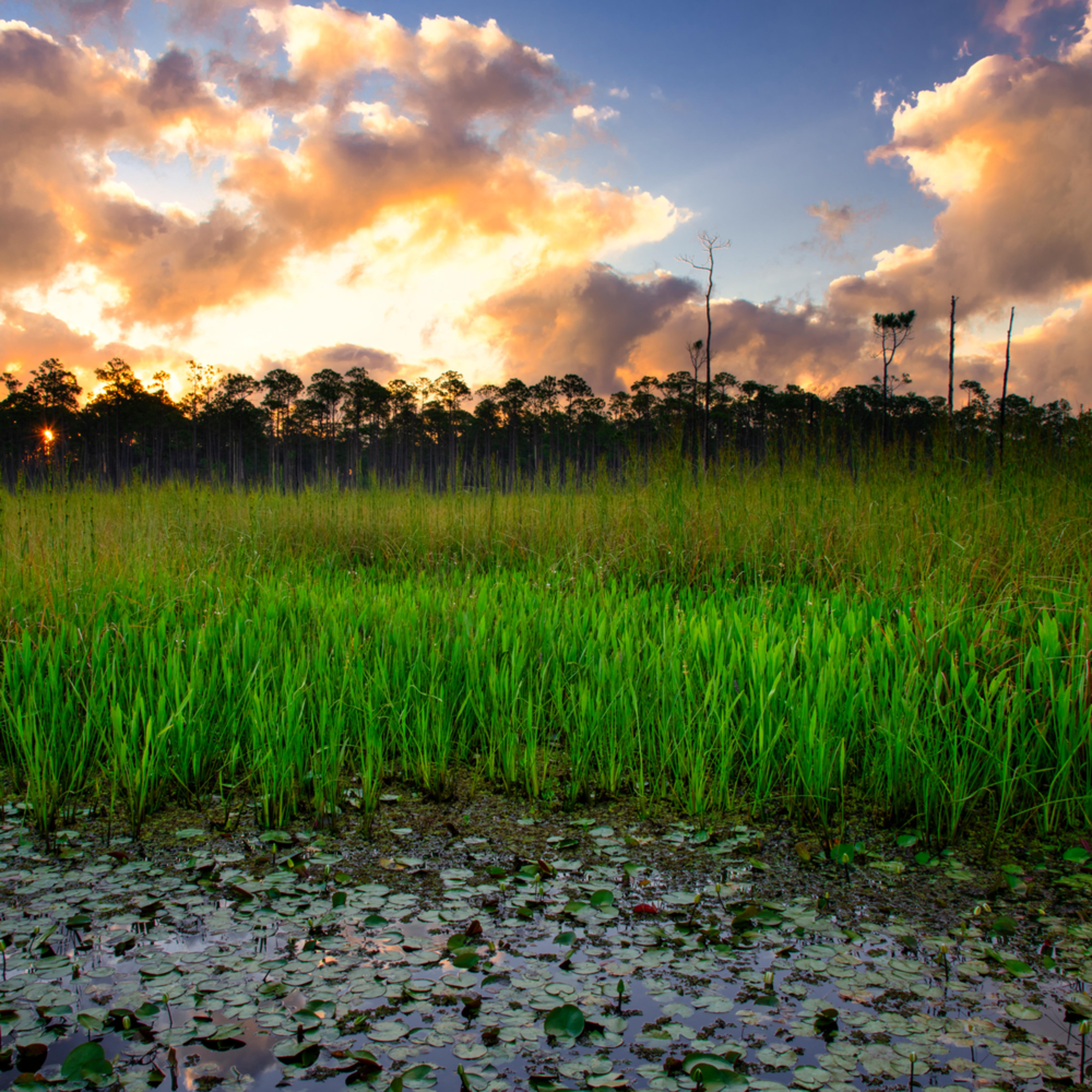 Andy crawford photography sunrise over big branch marsh 1 vgsinz