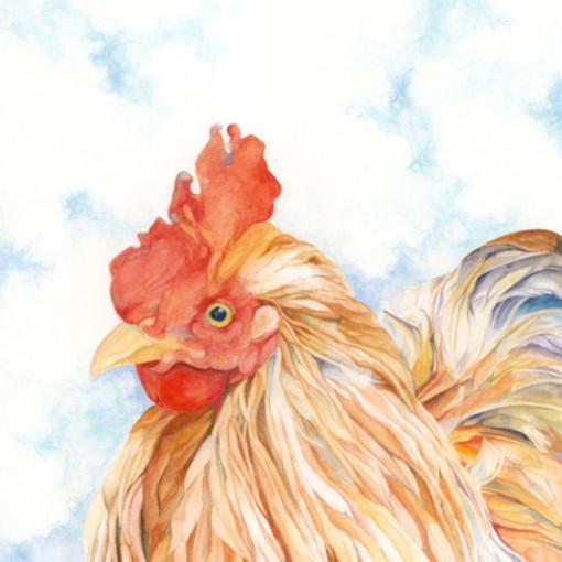 Goehring chicken v9buhi