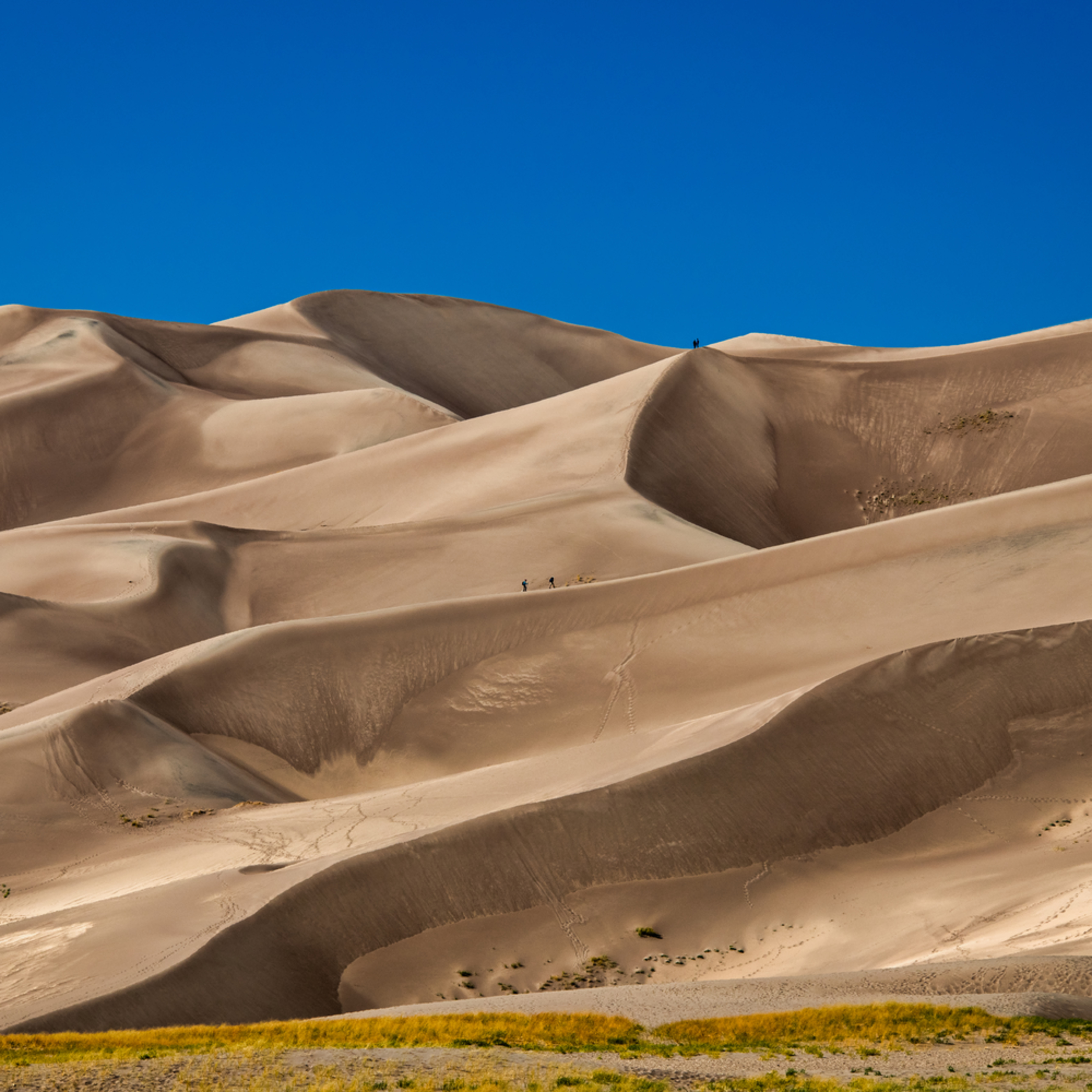 Andy crawford photography colorado great sand dunes national park 1 h3l8in