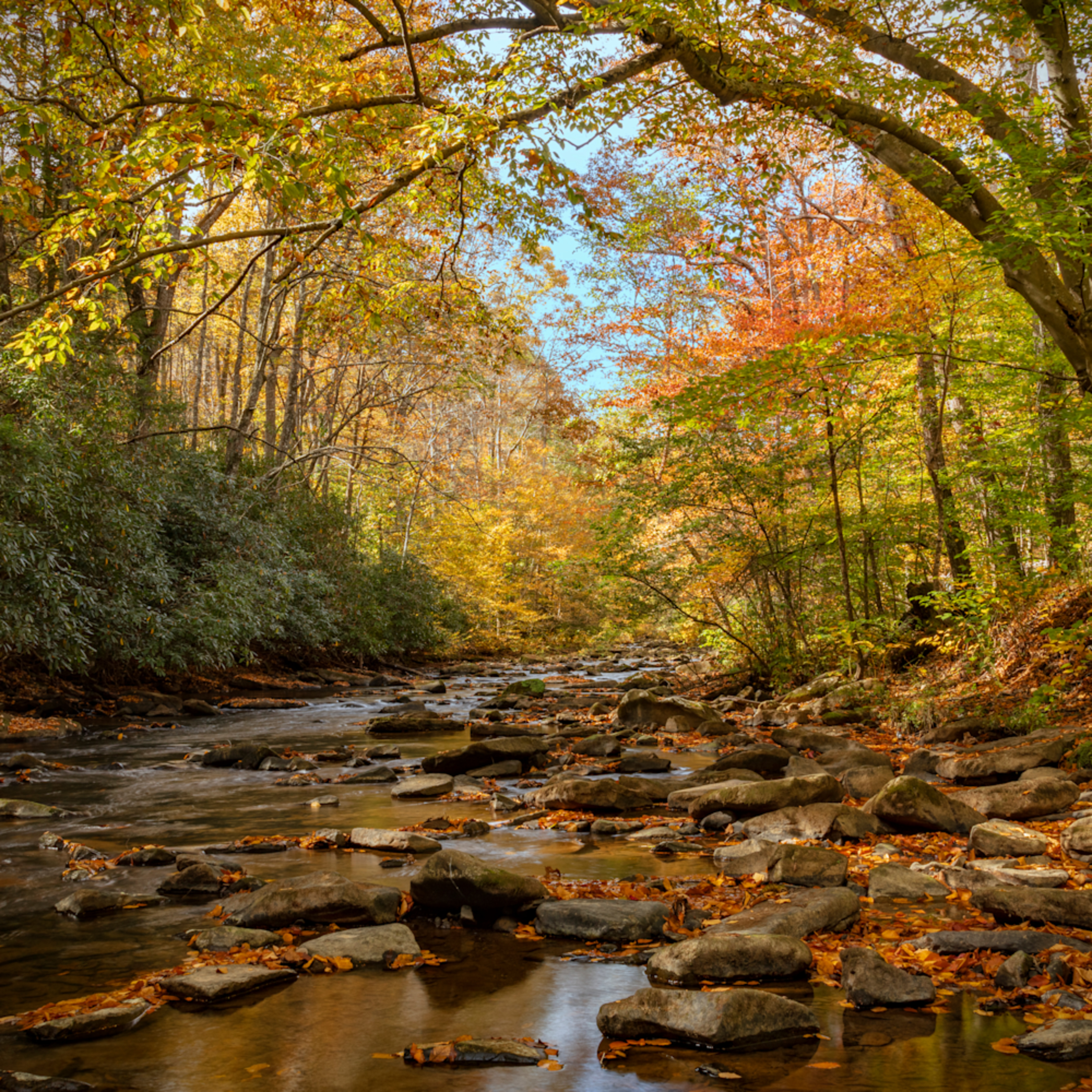 Fall dunlop creek west virginia 1547 fss j2uwow