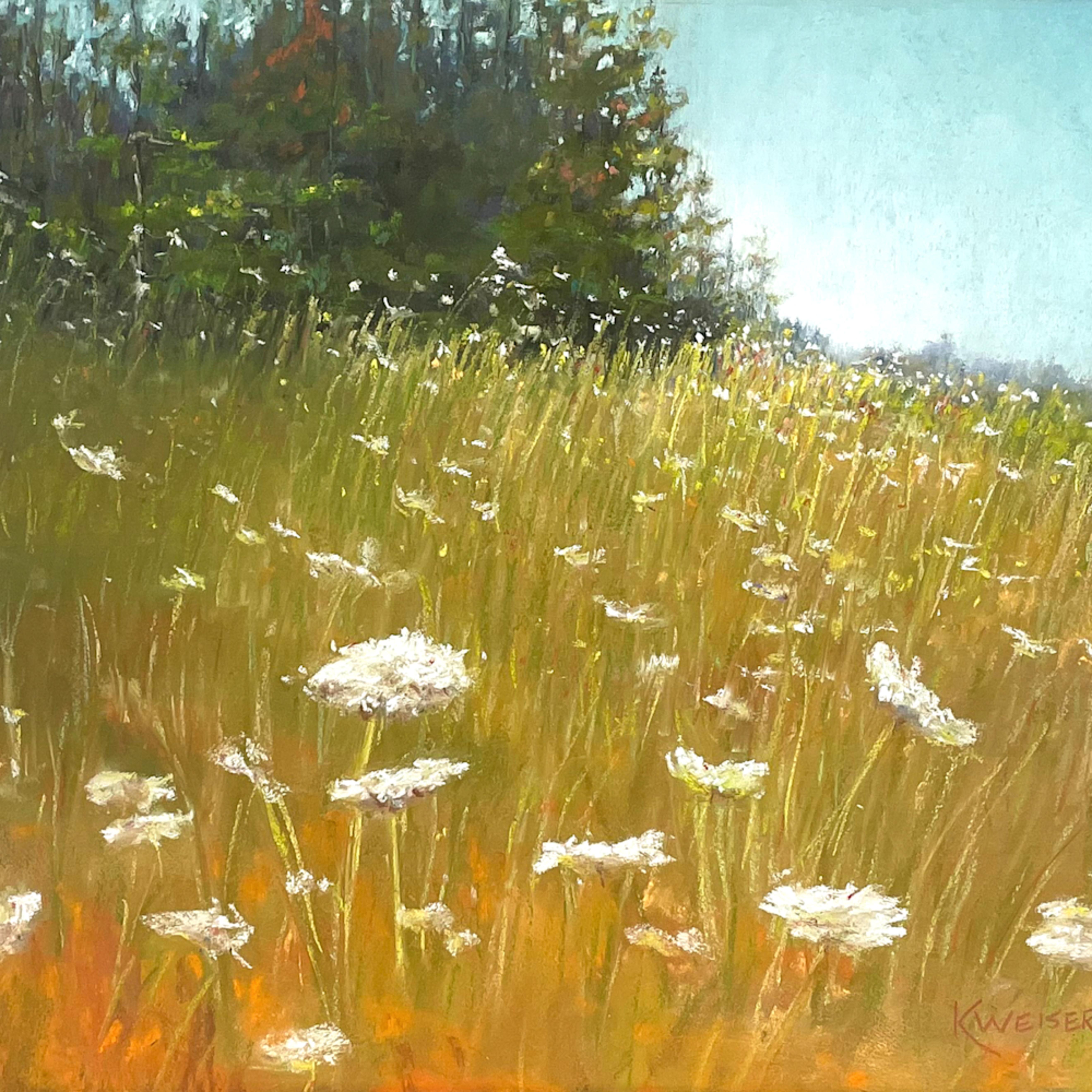 Queens meadow sfux54