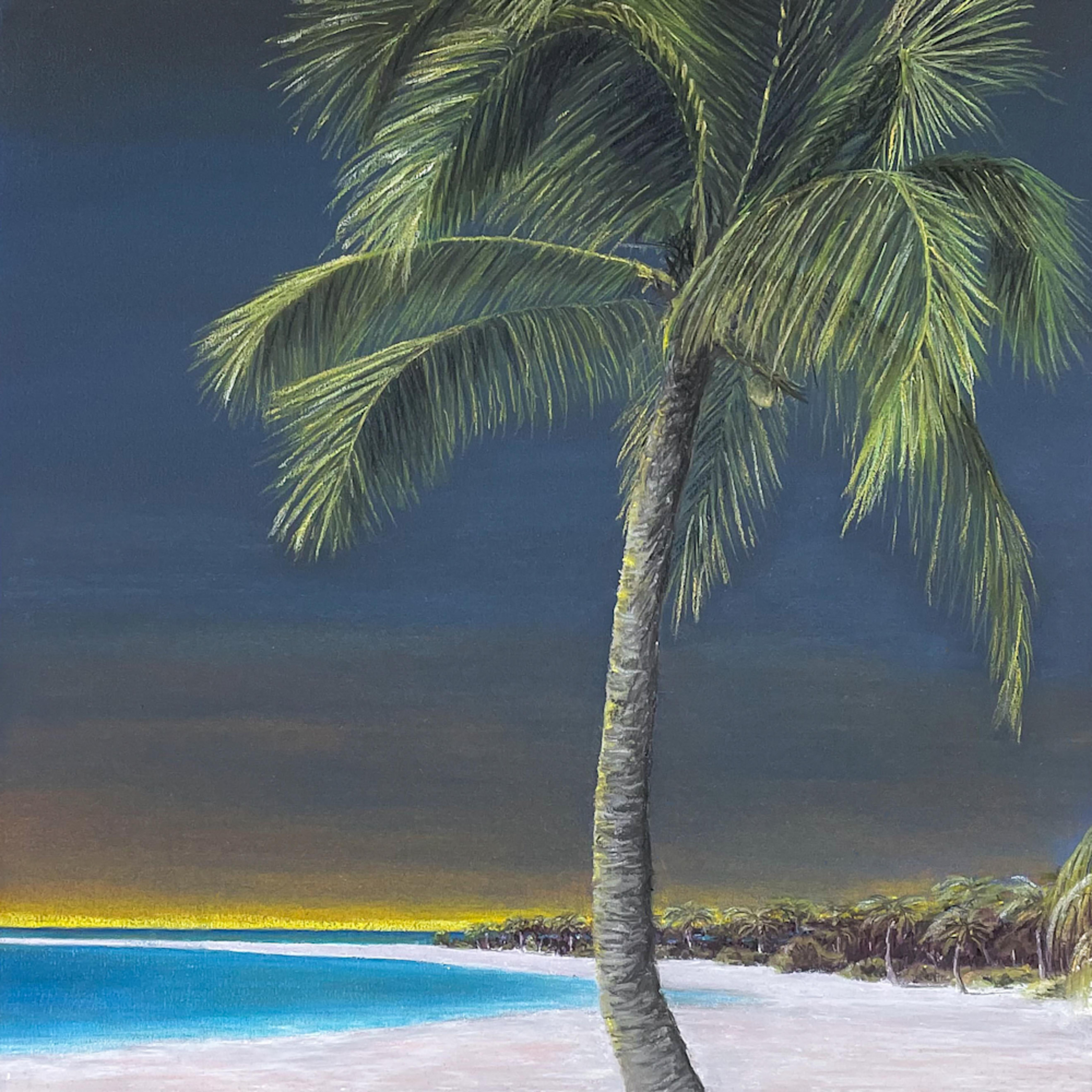 Lone palm dflrcz