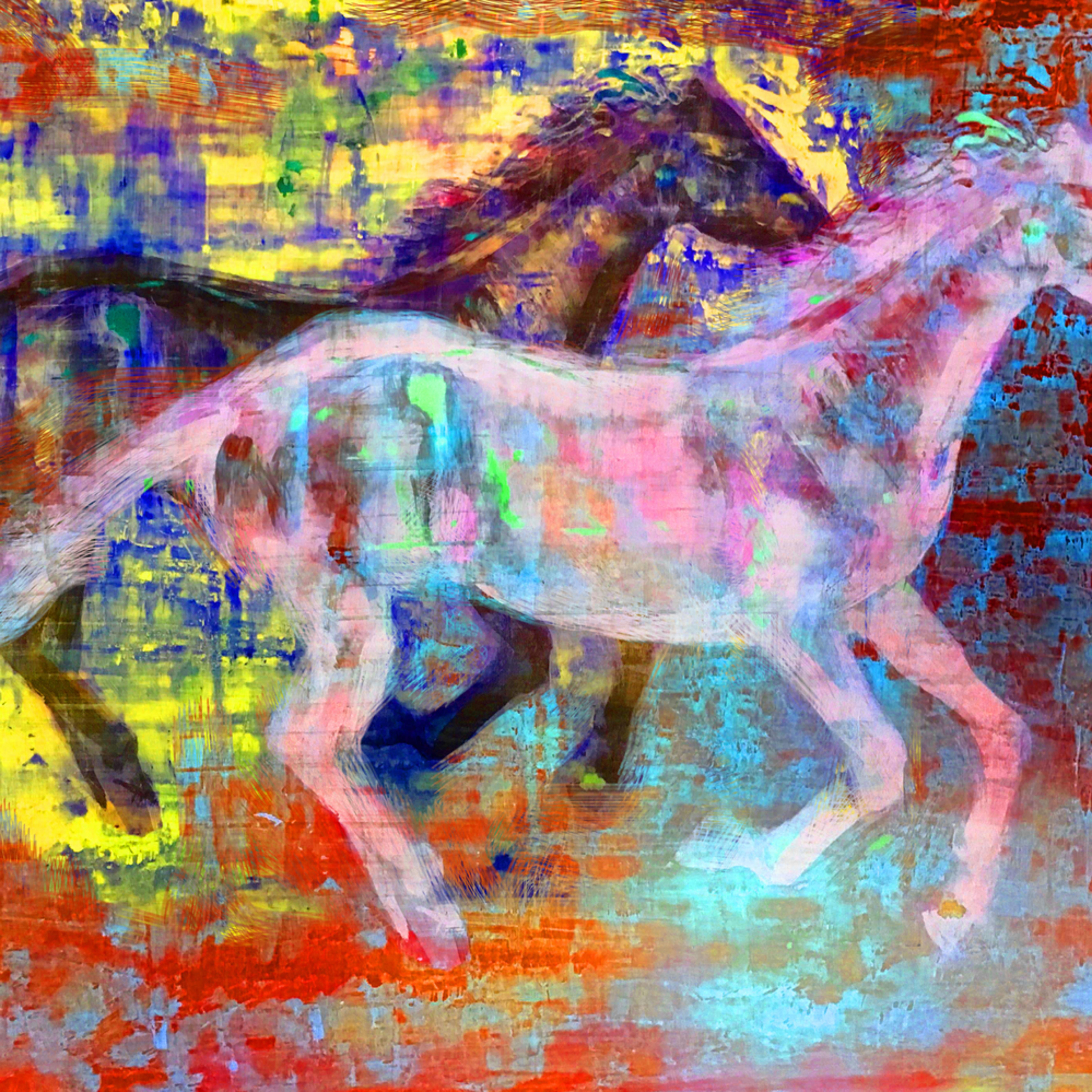 Colorhorse 6b8 5 17 iyupxx