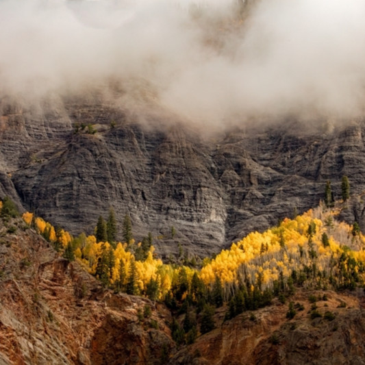 Foggy mountain 868 mdr ck6t3v