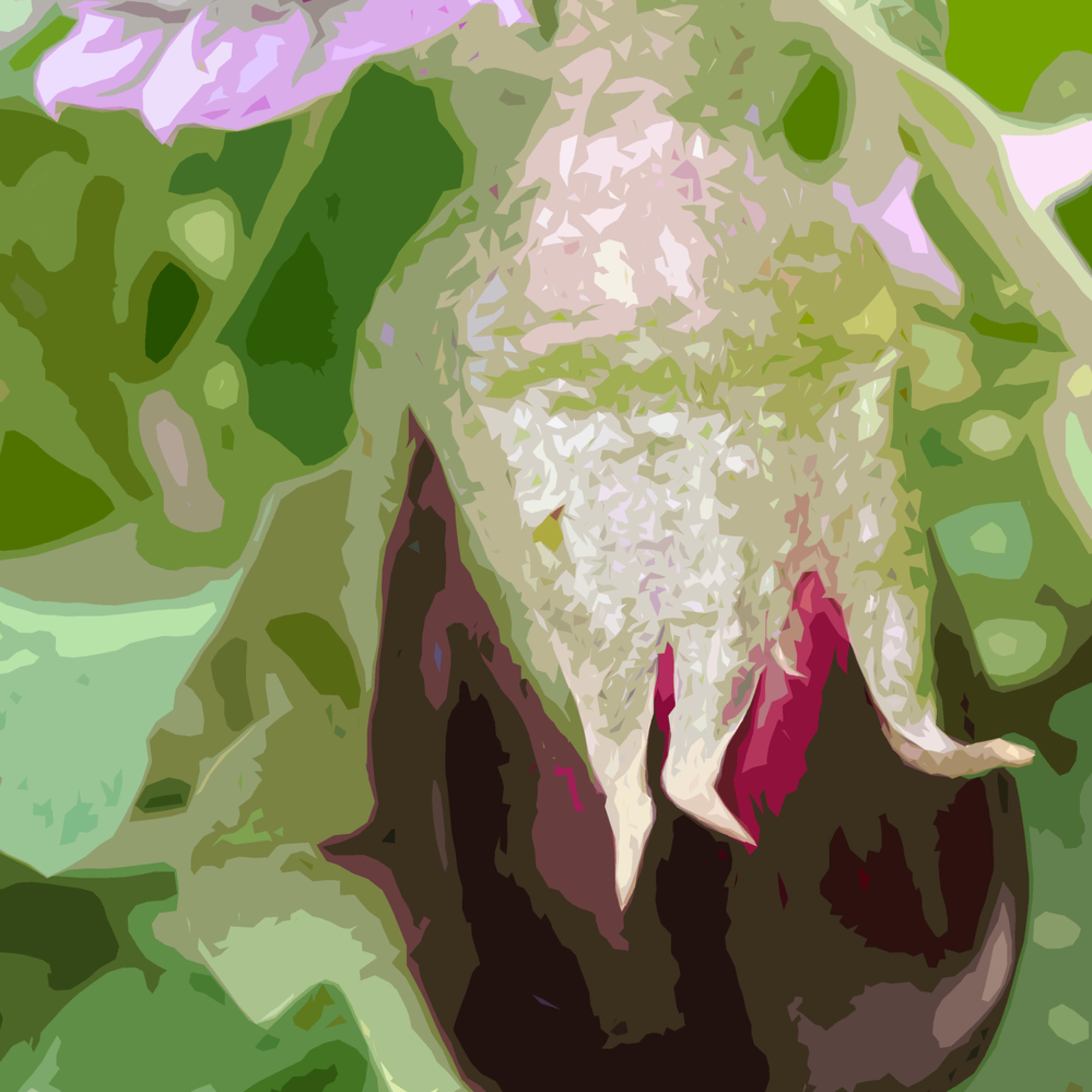 Eggplantblossom2.3 vuts5p