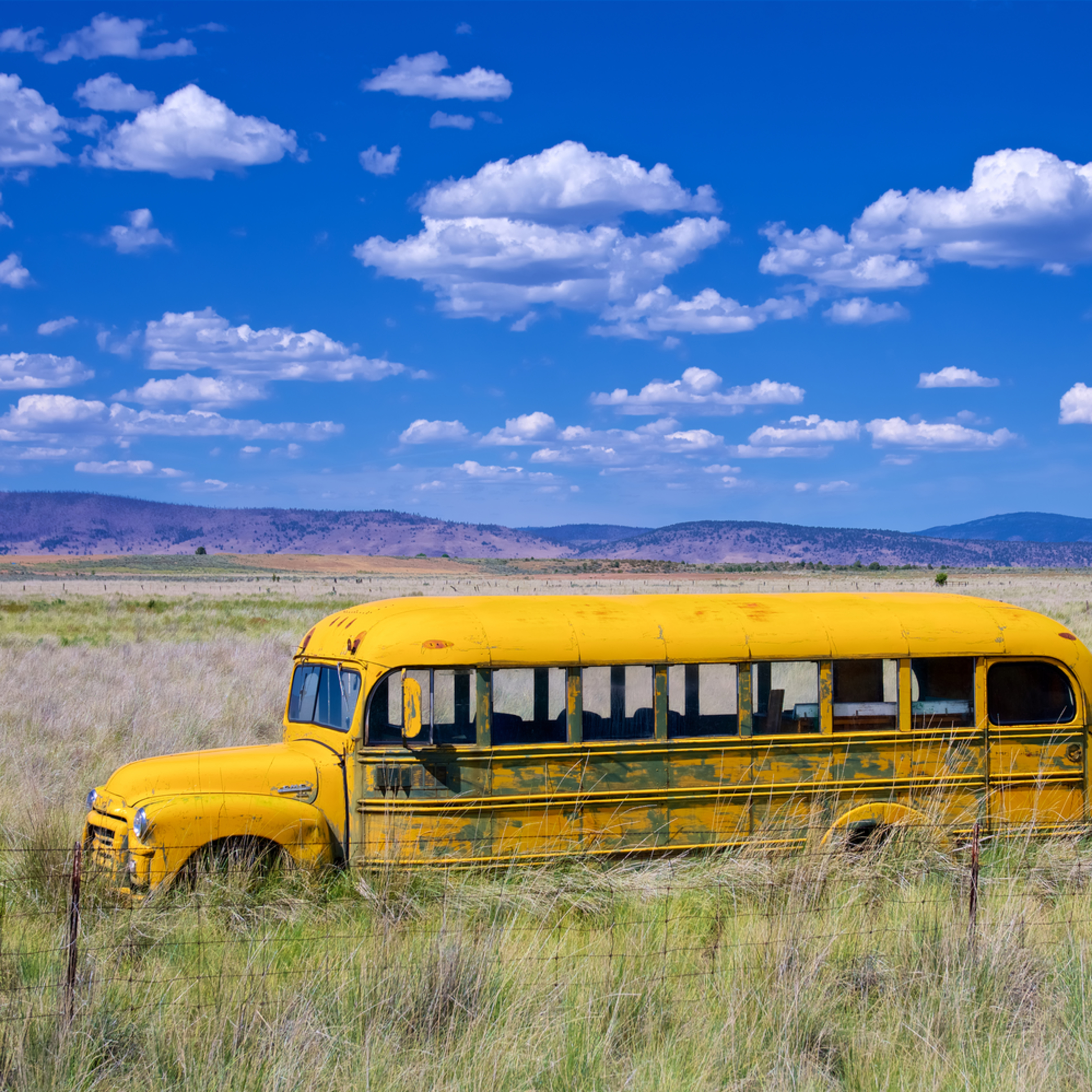 California school bus s8471b