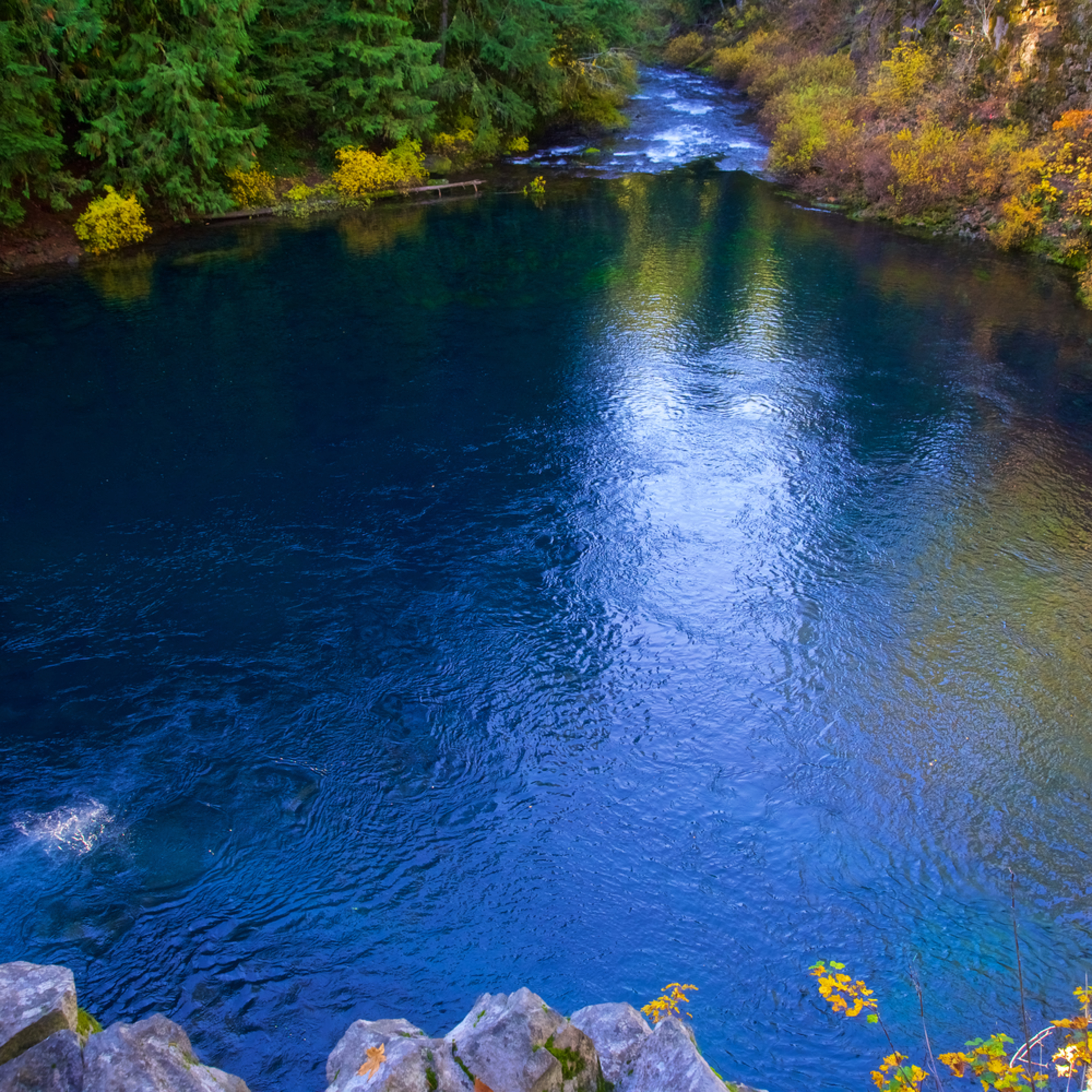 Tamolitch blue pool oregon tnkhhg