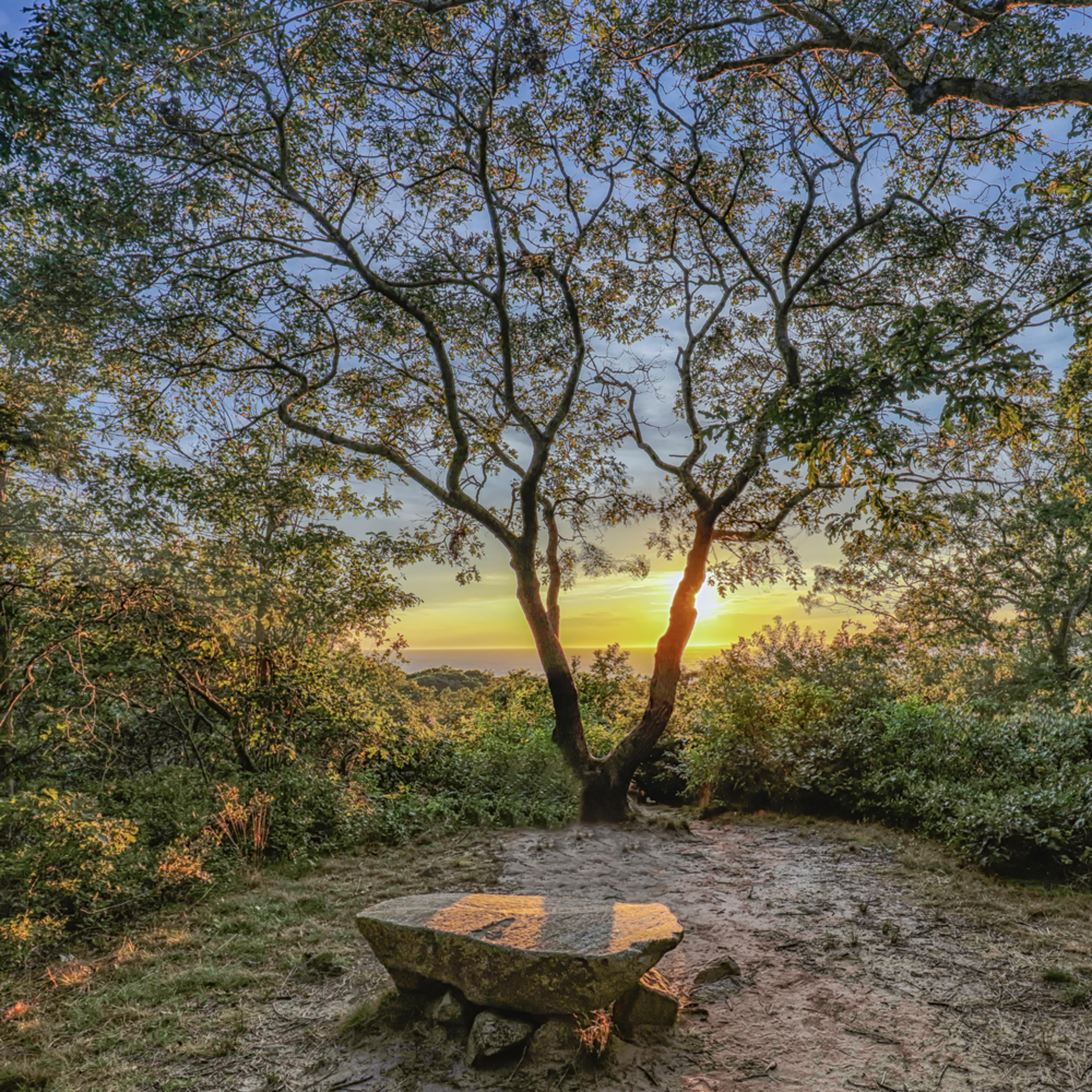 Menemsha hills solitude uxcc0l